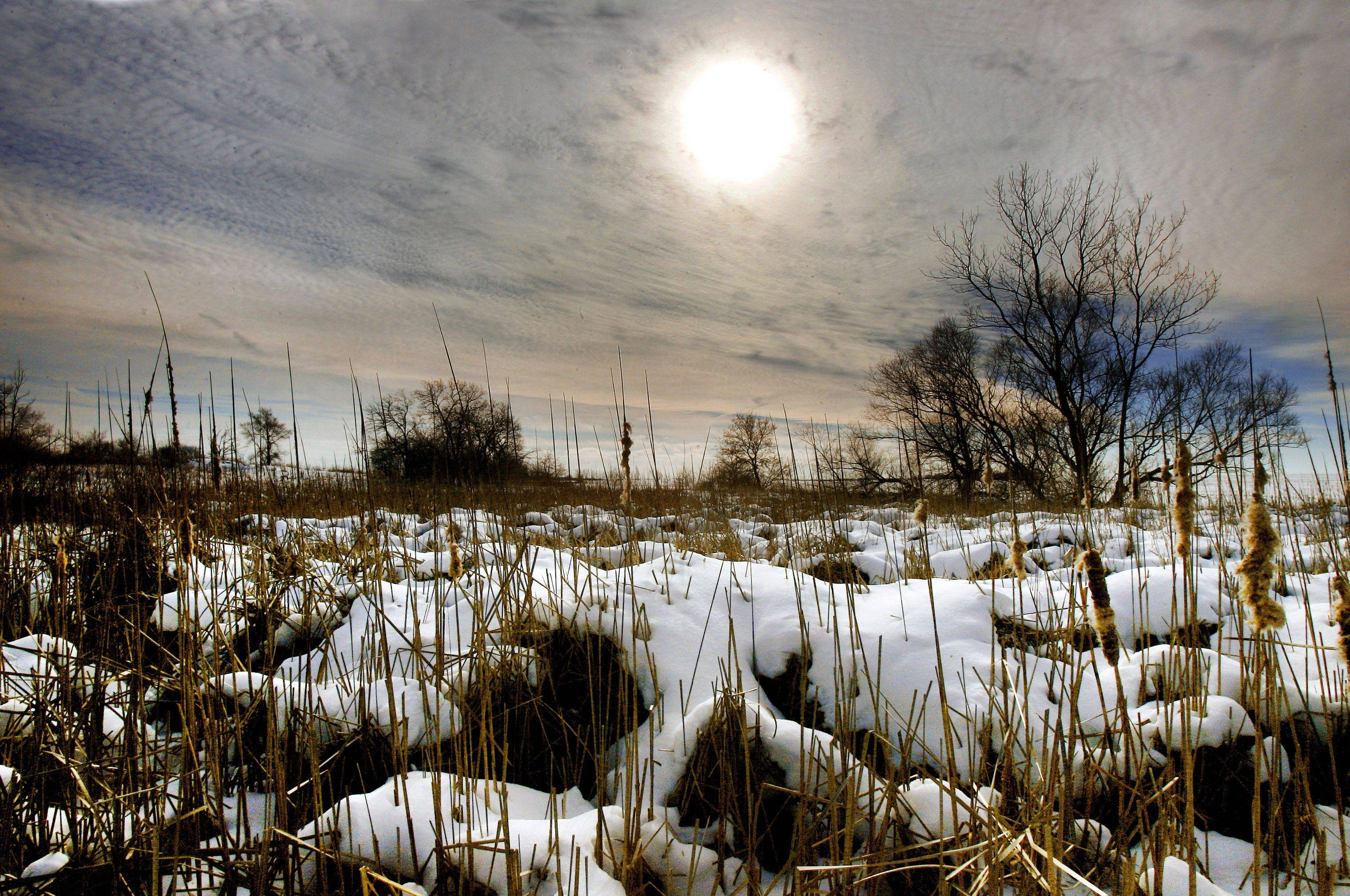 A wetland area is covered in snow as the sunsets on a Grayslake farm as snows cover the countryside around Lake County.