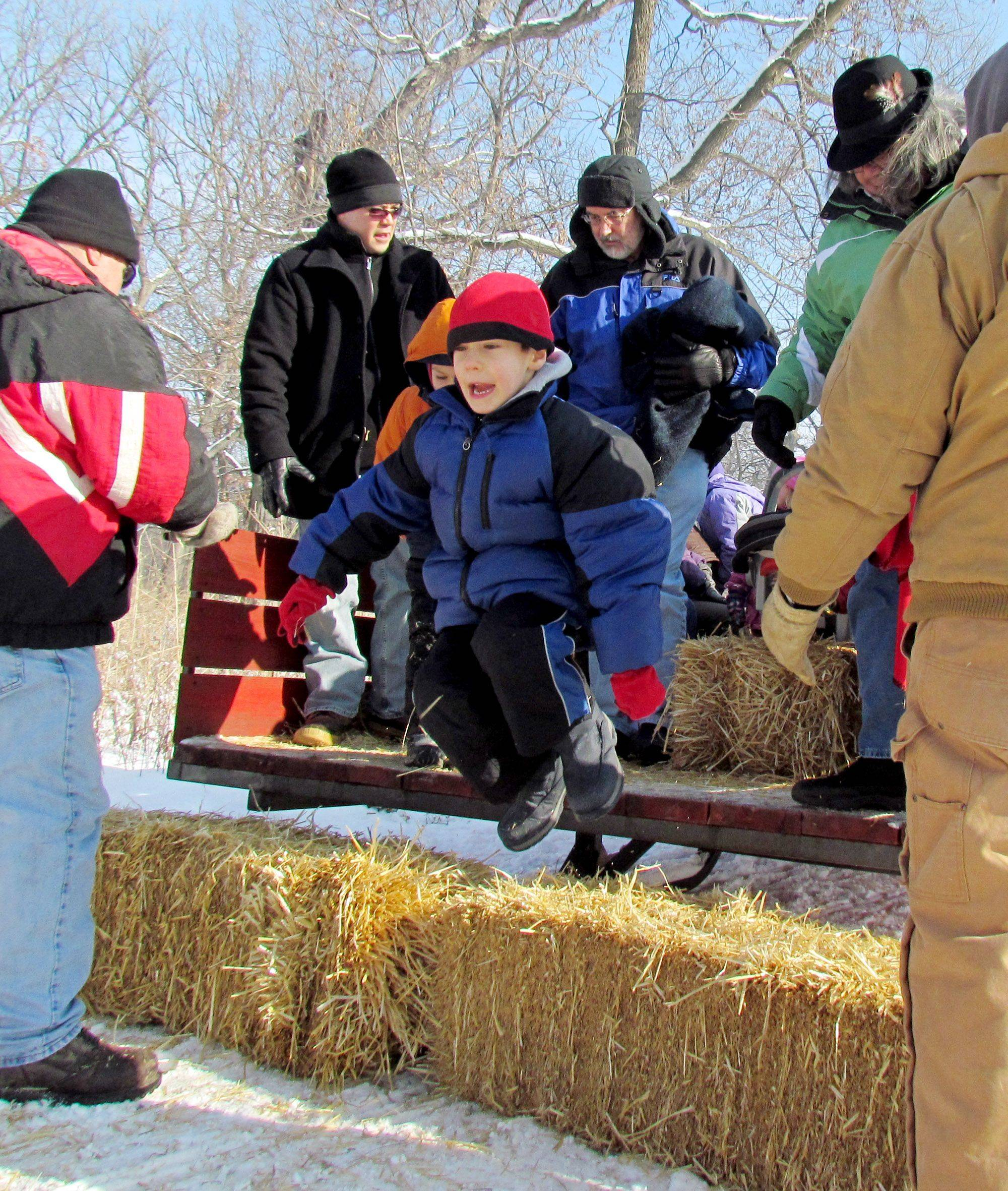 Caleb Walter of Wheaton jumps to the ground after his first horse-drawn sleigh ride Tuesday. He liked it, his father said.