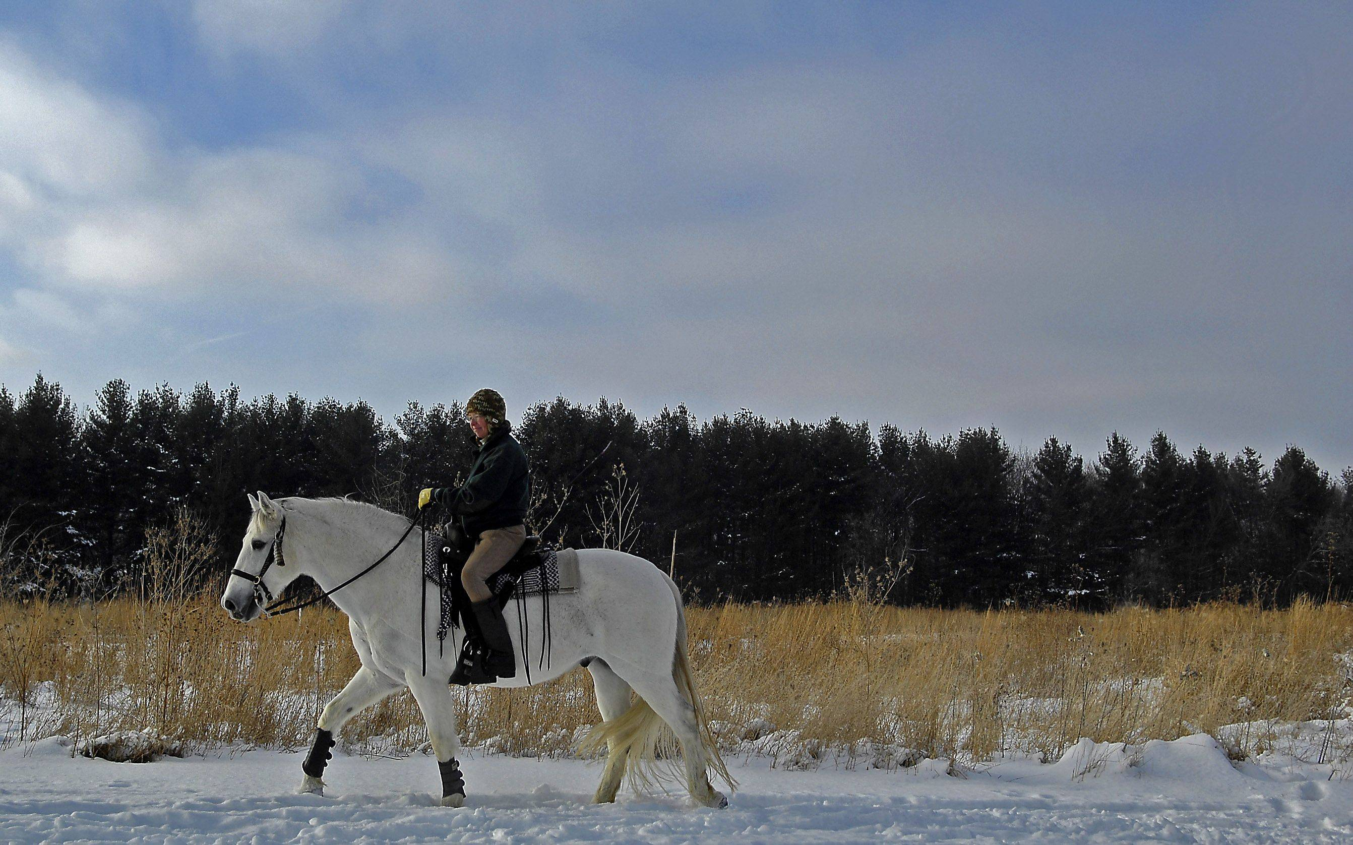 Deb Callister of Campton Hills and her horse Norman go for a winter ride through LeRoy Oakes Forest Preserve in St. Charles Monday. Callister said in the summer they ride in the area about once a week, but this is only the second time they've been out this winter. She said the two joined the Kane County mounted rangers and will begin working with them next year.