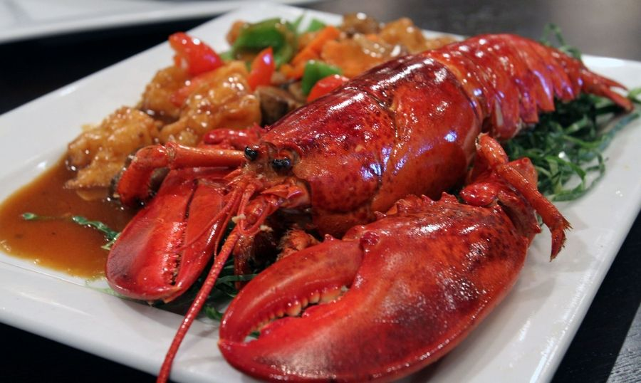 Chef special lobster features plump lobster pieces in a flavorful gravy at Bombay Chopsticks in Hoffman Estates.