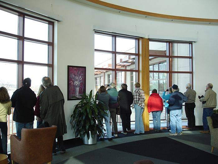 Bird-watchers keep an eye on a family of bald eagles from the warm vantage point of the River Room at the Gail Borden Library.
