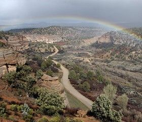 A heavenly view of Angel Canyon in Utah is just one of the perks at Best Friends Animal Sanctury in Utah, the new home for a little stray dog named Rusty, who alluded well-wishers and authorities in Oak Brook for years.