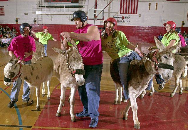 Steve Lundy/slundy@dailyherald.com, 2002Grant High School officials announced Monday night that Donkey Ball is not returning in 2012. The annual find raiser for the baseball program, will not come back because of liability reasons and a new gymnasium floor installed in the summer.