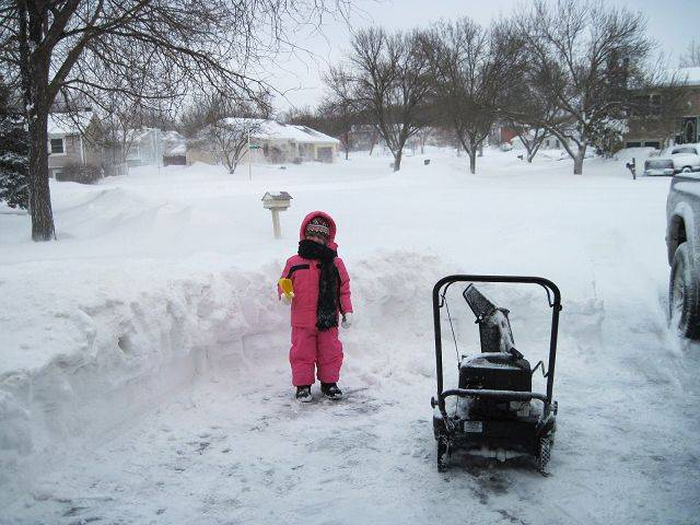 My daughter Jane, 4 years old,�helped her daddy outside briefly. We are in Bartlett.