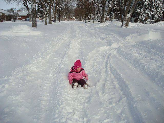 Photo by Karen LuehrEmma L., who'll turn 2 on Sunday, sitting in the middle of our street before it was plowed.