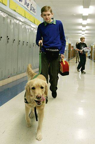 Patrick Maresh, a Westmont boy with multiple disabilities, walks down the hall at his school with Mary Lou. Before he obtained the service dog, he would flatten himself against the lockers because he was afraid of being bumped into and knocked down.