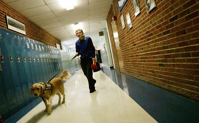 With his service dog, Mary Lou, Patrick Maresh navigates the halls of Herrick Middle School in Downers Grove more easily.