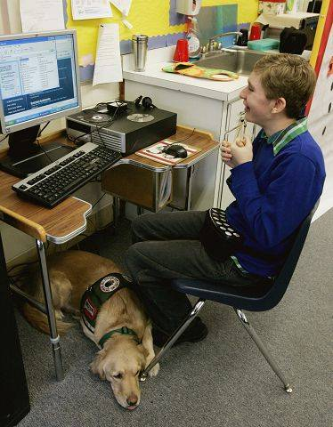 While Patrick Maresh, an eighth-grader at Herrick Middle School in Downers Grove, works on the computer, Mary Lou lies quietly at his feet. Patrick's teacher says the dog has become a part of the class.