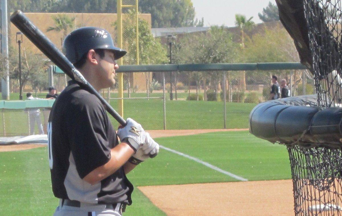 Right fielder Carlos Quentin gets ready to take batting practice Tuesday during the White Sox' first full-squad workout in Glendale, Ariz..