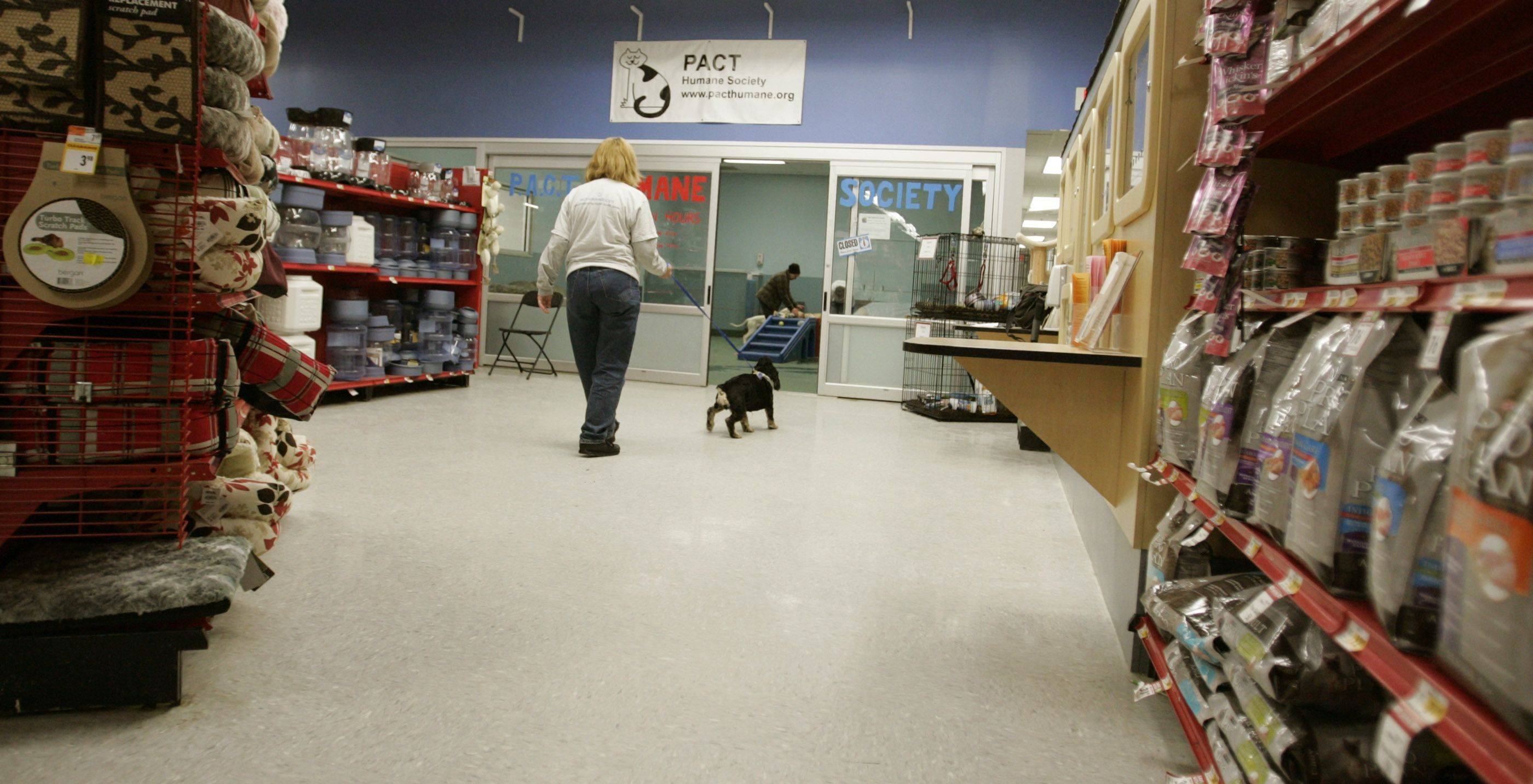 The new PACT Humane Society, which stands for People and Animals in Community Together, opened last fall inside the Petco store, 412 W. Army Trail Road, Bloomingdale.