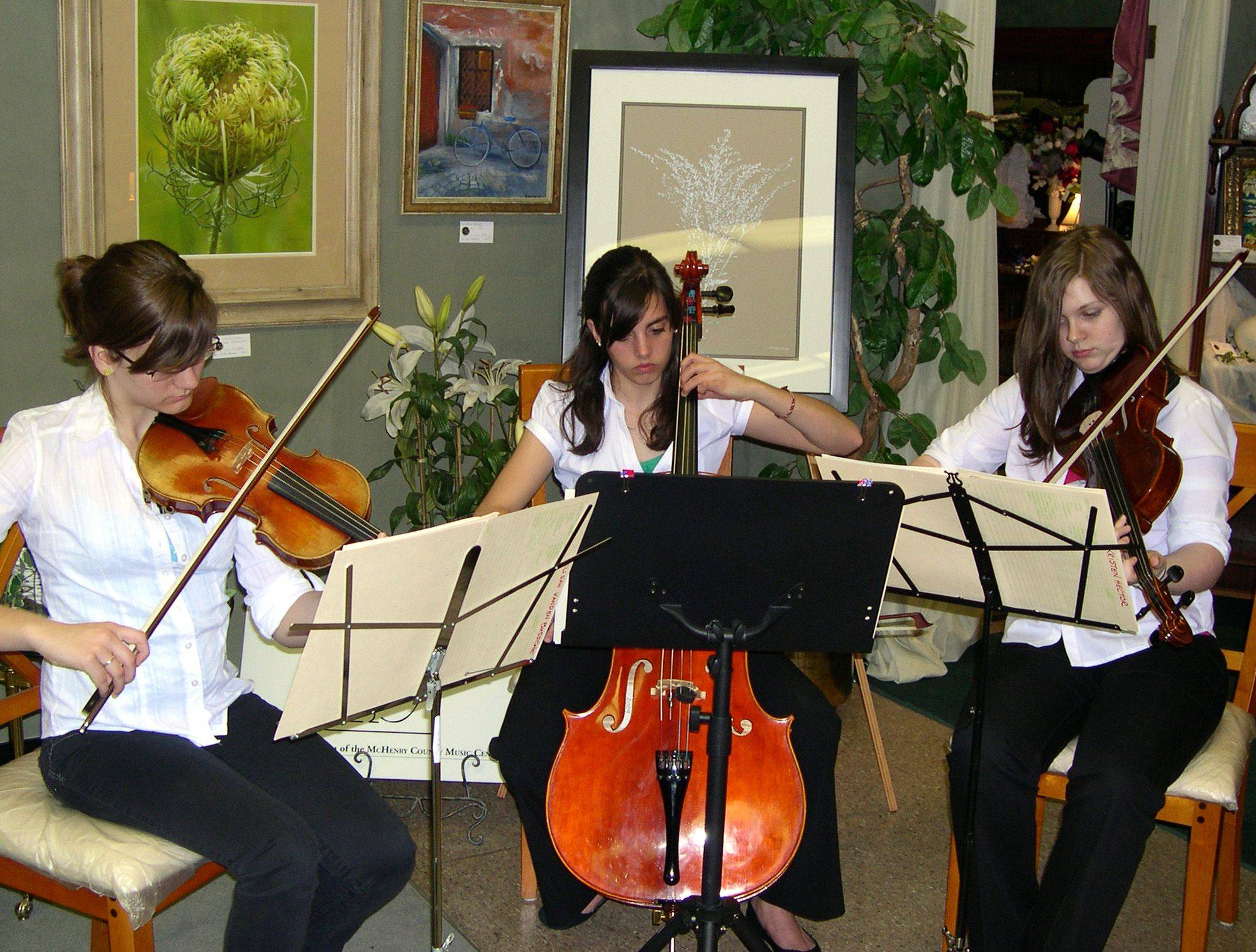 A trio from the McHenry County Youth Orchestra performs at an art gallery opening in August 2010. From left are Elisah Vanden Bussche, Lake in the Hills (violin), Kelly Halpin, Algonquin (cello), and Kristen Hector, West Dundee (viola). The orchestra will perform a concert Sunday, Feb. 27, at the Raue Center for the Arts in Crystal Lake.