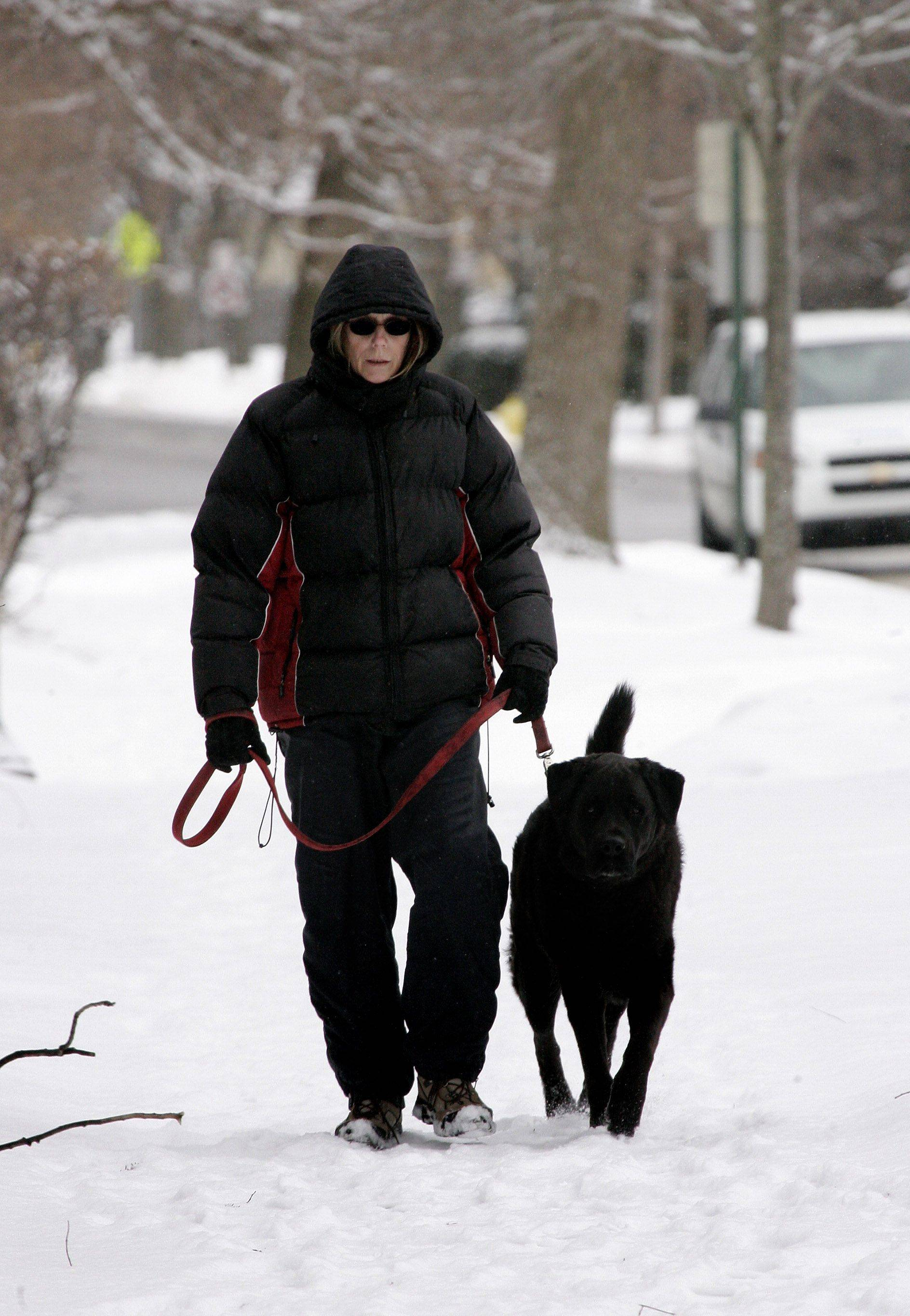 Carol Corter of Libertyville walks her dog, Izzo, along Rockland Road in Libertyville Tuesday after snow fell overnight around Lake County. The snow we received Tuesday and Wednesday haven't been enough to set a record, but we may tonight.