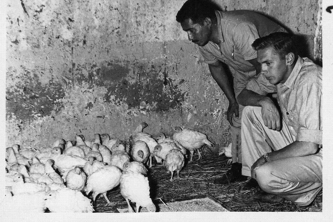 Vern Risty, right, and a Bolivian farmer survey the progress of the farmer's chicken flock.