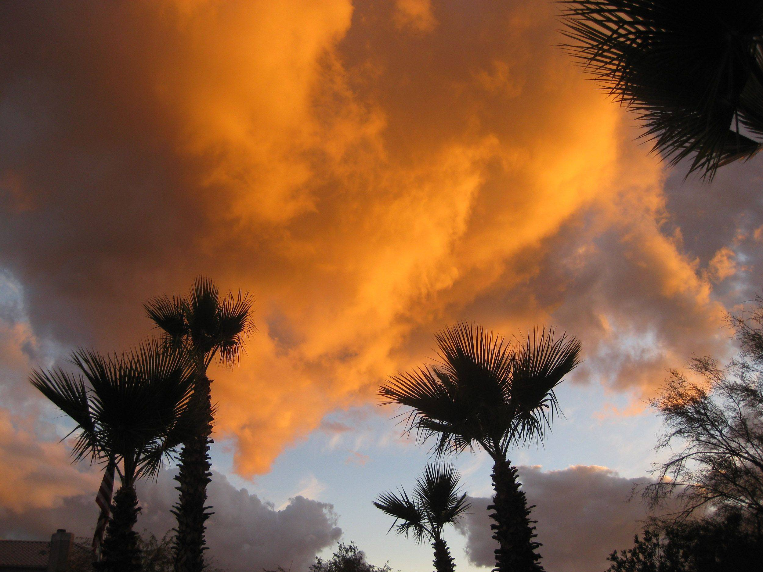 Chuck Bennett of Mount ProspectThe setting sun created a warm glow on the clouds in Arizona on Sunday, February 20th, in Fountain Hills.