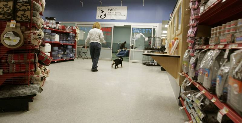 Bloomingdale Tells Pact Pet Shelter Inside Petco To Close