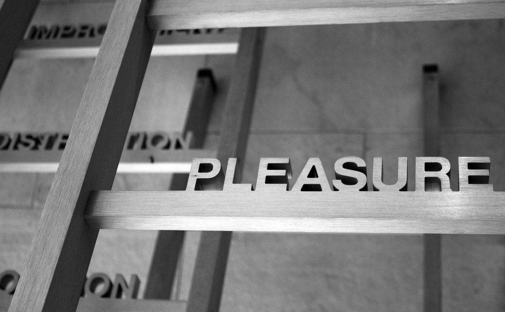 Larry Pearlman of Naperville This was taken in a government building in Toronto, Ontario. The piece of art has stainless steel words mounted on ladders. I liked the focus on the single word 'pleasure' with the rest of thewords blurred.