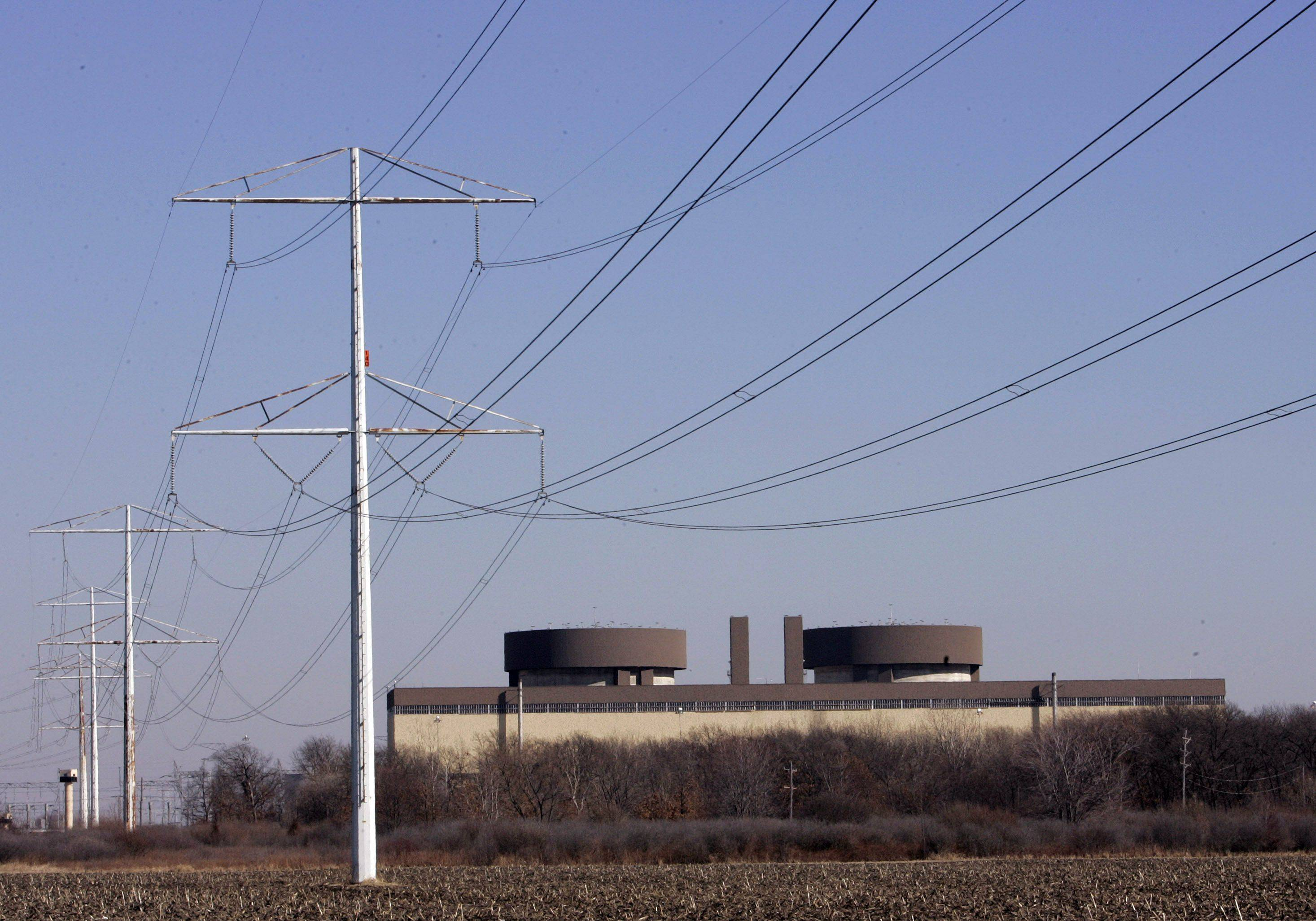 Exelon nuclear power plants in Illinois, like the Braidwood Nuclear Generating Station, are protected against earthquake, floods and other disasters, chairman and CEO John Rowe said.