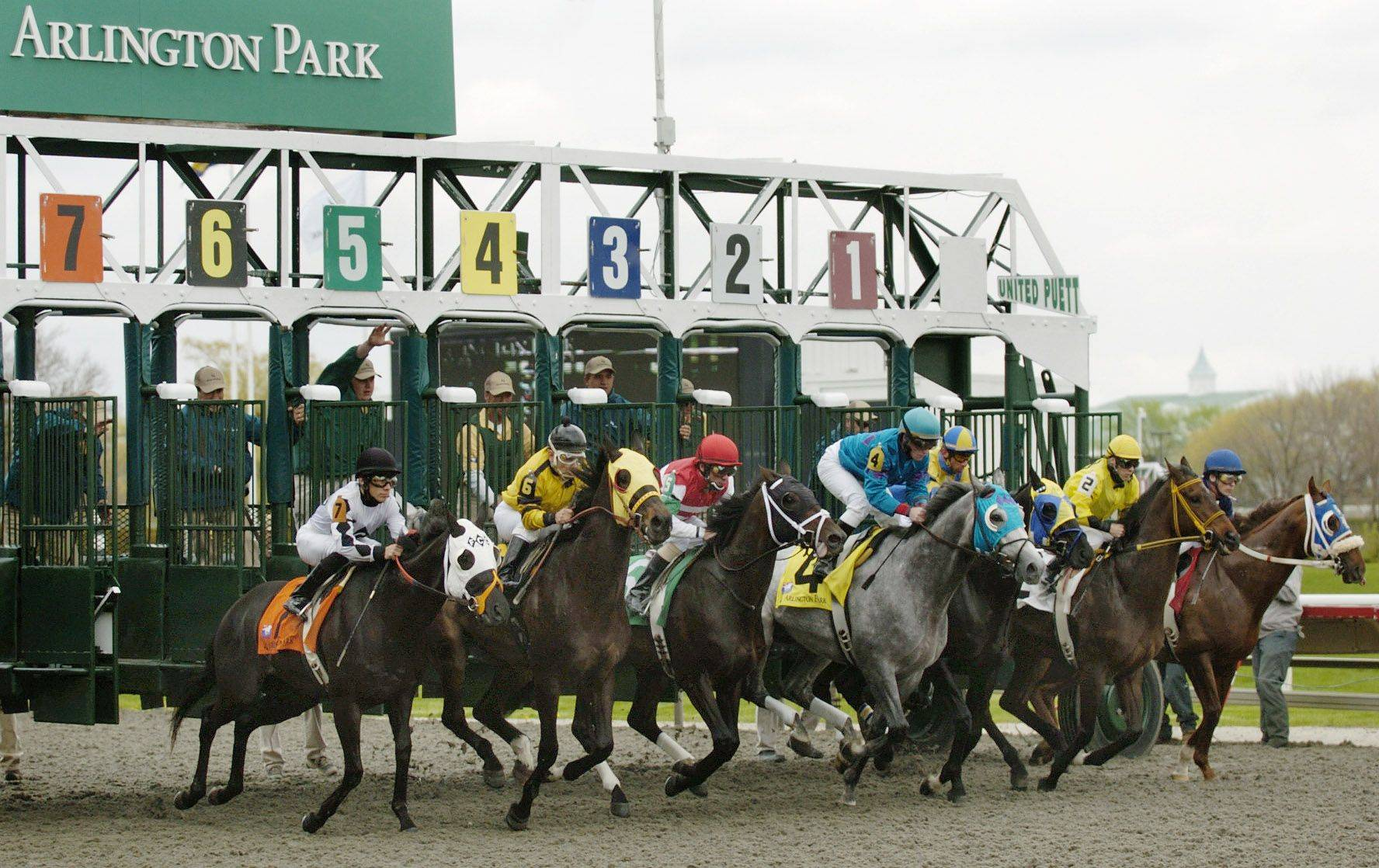 Arlington Park could have more than horse racing in future seasons under a plan by Skokie Democrat Lou Lang for the addition of slot machines at horse-racing tracks across the state to save the struggling industry.
