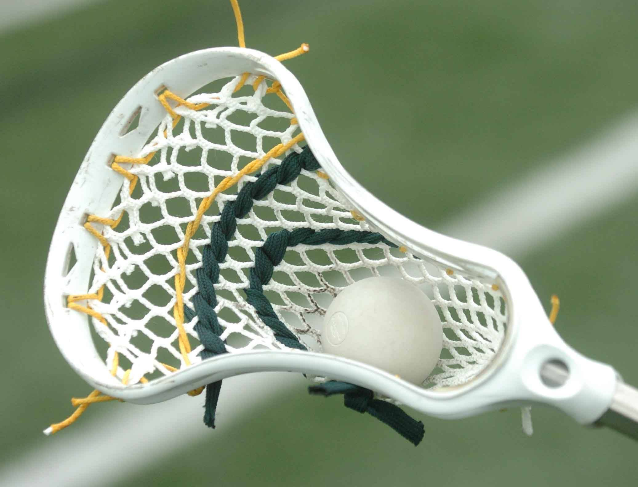 A lacrosse stick, net and ball.