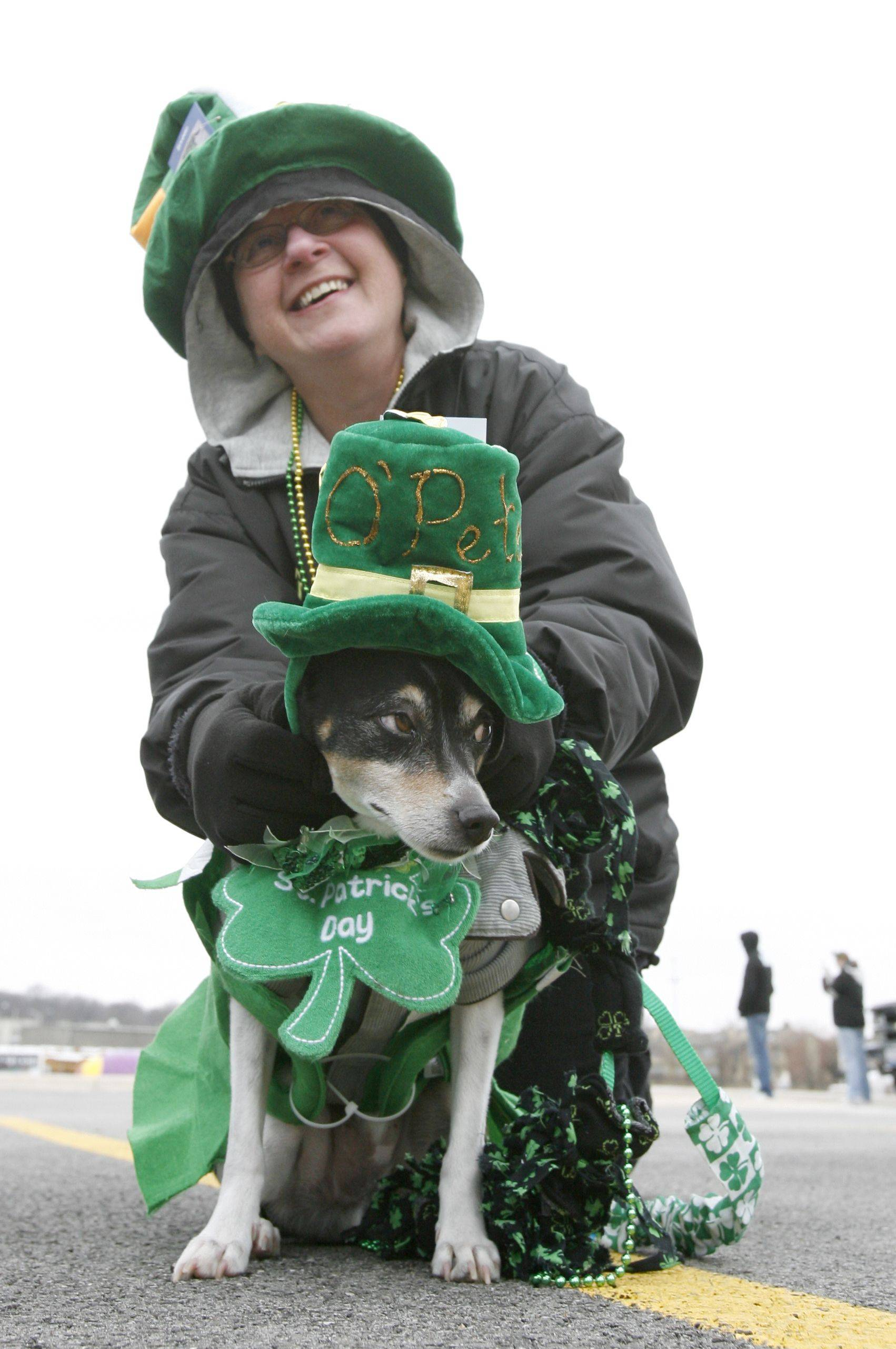 Cathy Barrett of Plainfield is all Irish, along with her therapy dog named Petey during the annual St. Patrick's Day Parade in downtown Naperville.