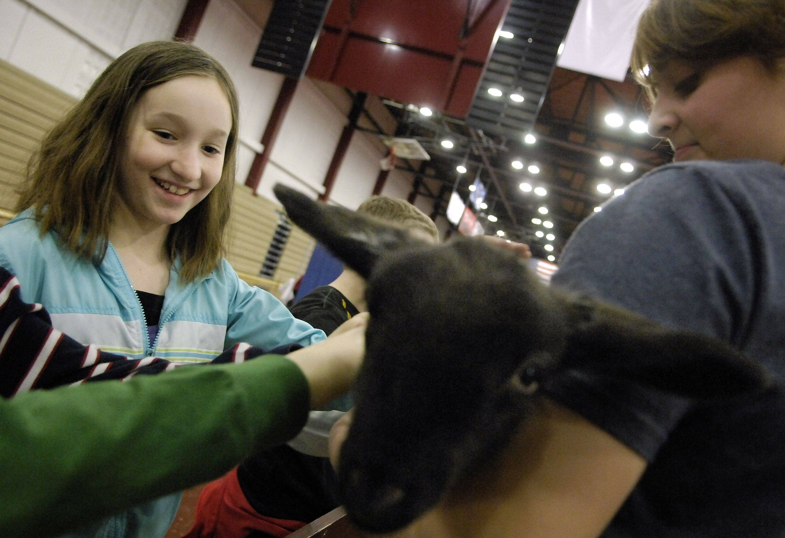 Fourth grader Violet Milligan from Davis Elementary in St. charles pets a two-week-old lamb during Ag Days at Mooseheart in Batavia Wednesday. The three-day event is put on by the Kane County Farm Bureau and is held during National Agriculture Week. The lamb is being held by 4-H volunteer Allison Steininger, a freshman at Kaneland High School.