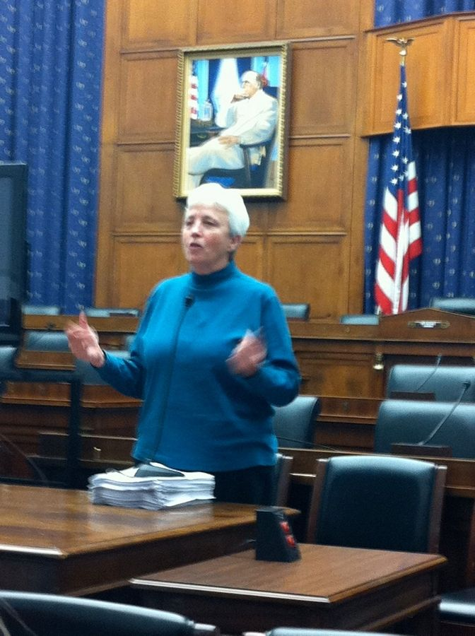 "Diane Nilan, founder and president of the Naperville-based nonprofit ""Hear Us,"" spoke about the plight of homeless families and children in a congressional briefing Wednesday in Washington, D.C. She also screened her documentary, ""On the Edge,"" about homeless families."