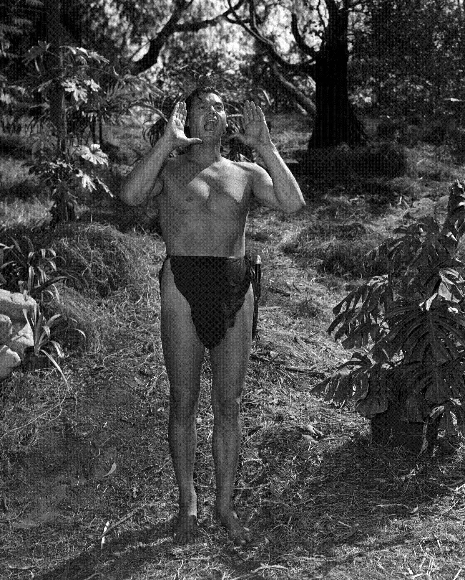 Johnny Weissmuller's Tarzan films are featured in new Turner Classic Movies DVD collections.