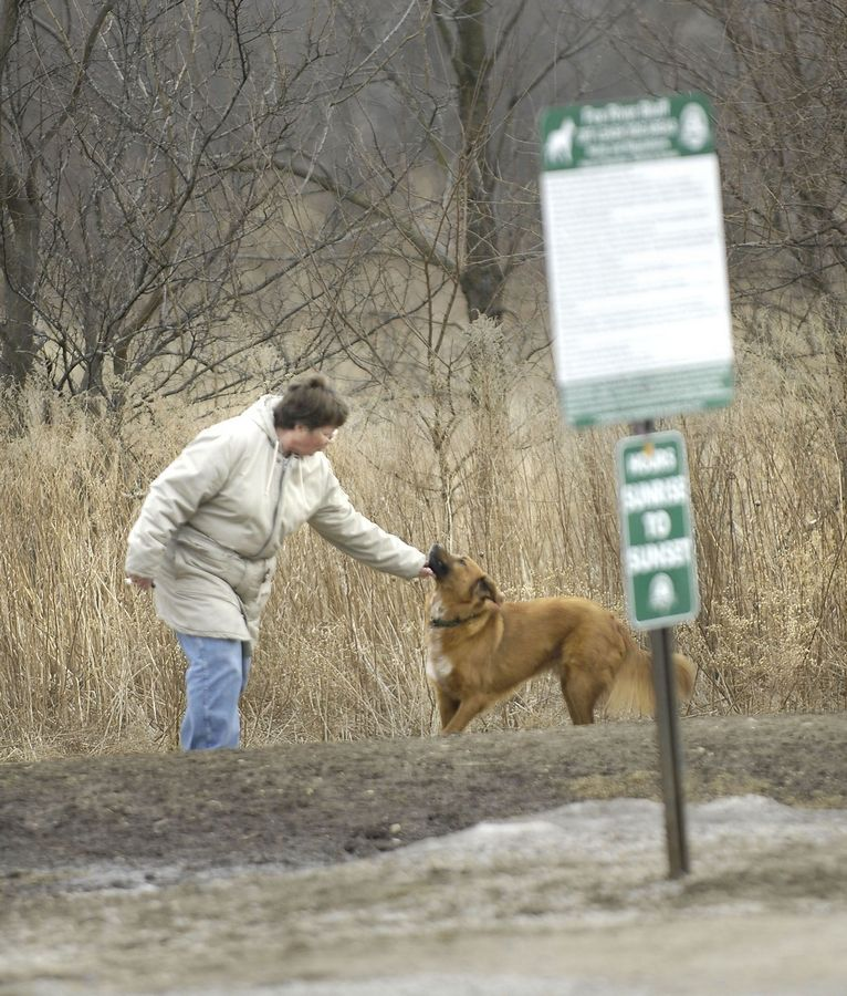 Lou Rog finishes a walk with her retriever mix, Bear, last month at the Fox River Bluff West Forest Preserve in St. Charles Township. Fox River Bluff West is one of three off-leash facilities in county forest preserves.
