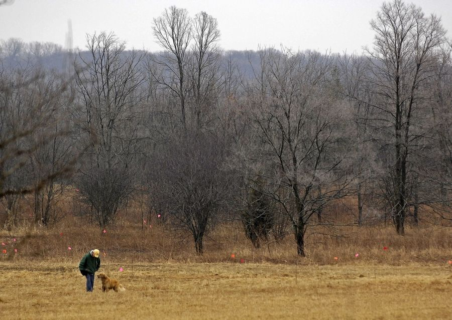 Jack Otis of Geneva and Abby, a golden retriever, enjoy the surroundings at Fox River Bluff West Forest Preserve.