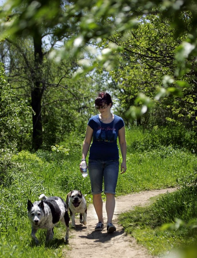 Heather Chilo of South Elgin enjoys the warm spring weather with her dogs Dauber and Payton as they walk in the Fox River Bluff West Forest Preserve in St. Charles Township.