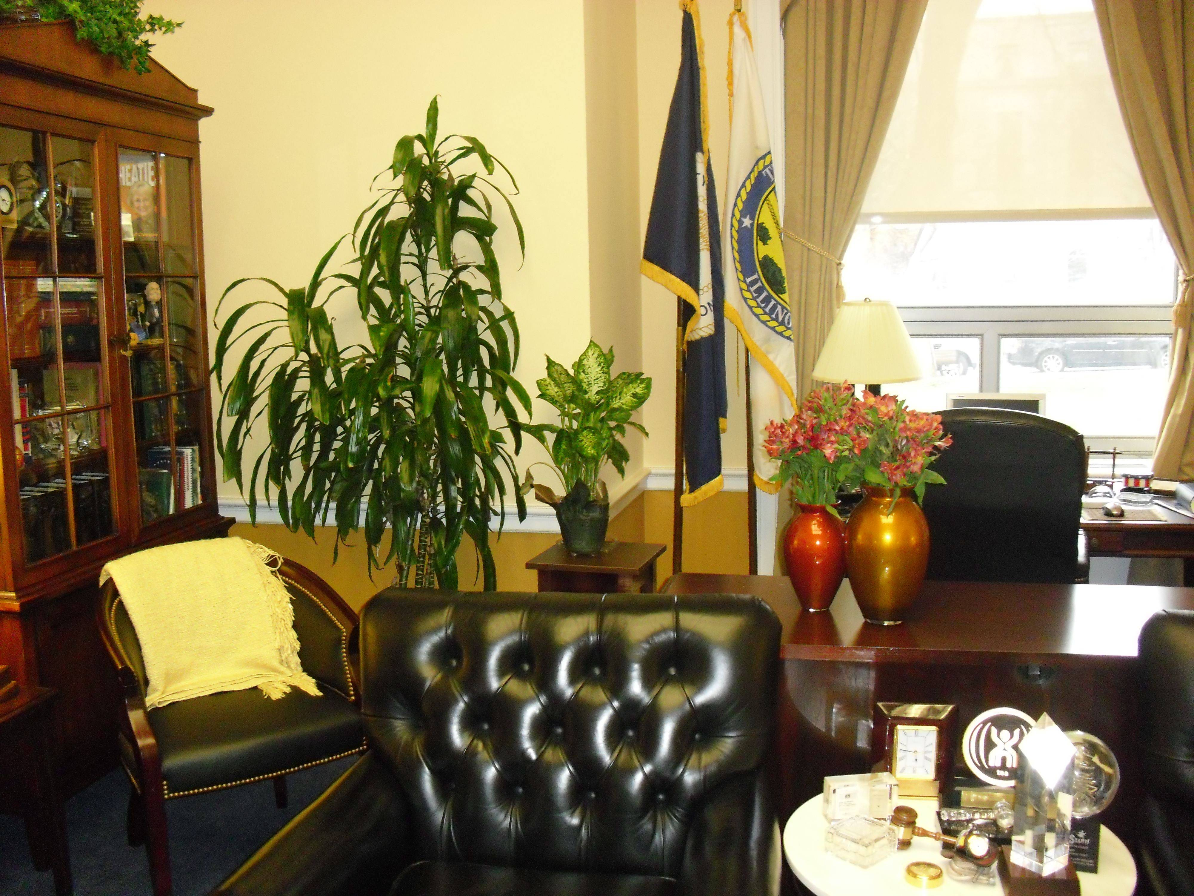 U.S. Rep. Judy Biggert's office is a bright, sunny yellow, warm and welcoming.