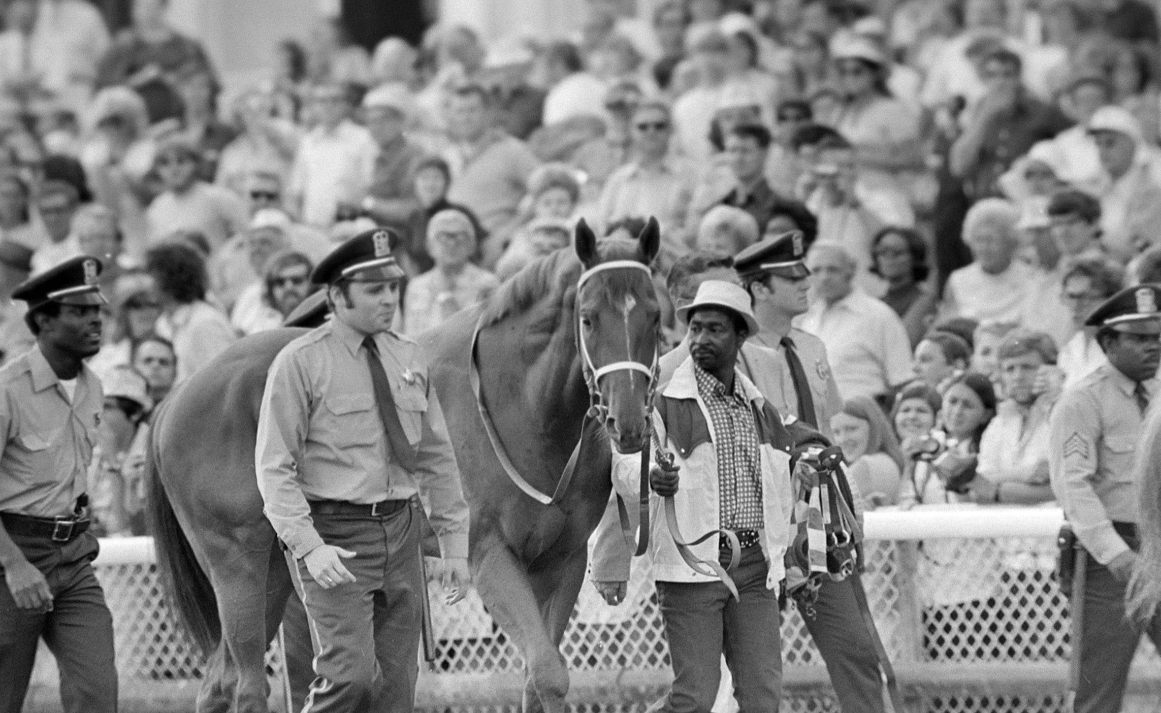 The legendary racehorse Secretariat visits Arlington Park for the Arlington Invitational on June 30, 1973. Arlington, some insiders say, no longer draws top horses because of the small purse sizes.