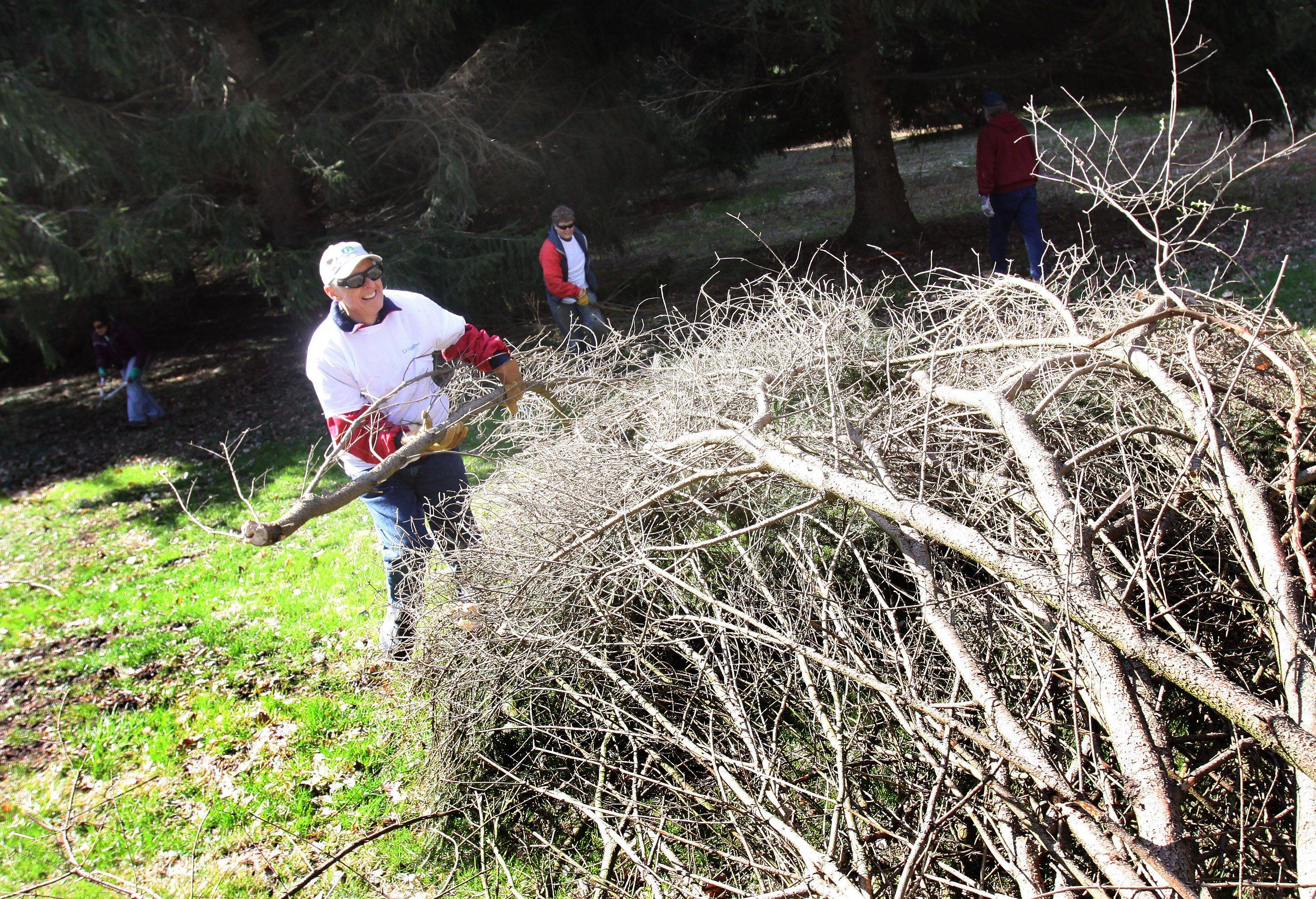 "Paul Kanzer, a customer success director at CA Technologies in Lisle, was one of roughly a dozen volunteers from the company who cut branches and cleared buckthorn Thursday as part of an Earth Day project at St. James Farm near Warrenville. ""I enjoy doing this,"" Kanzer said. ""Hopefully it helps to maintain the beauty of the grounds."""