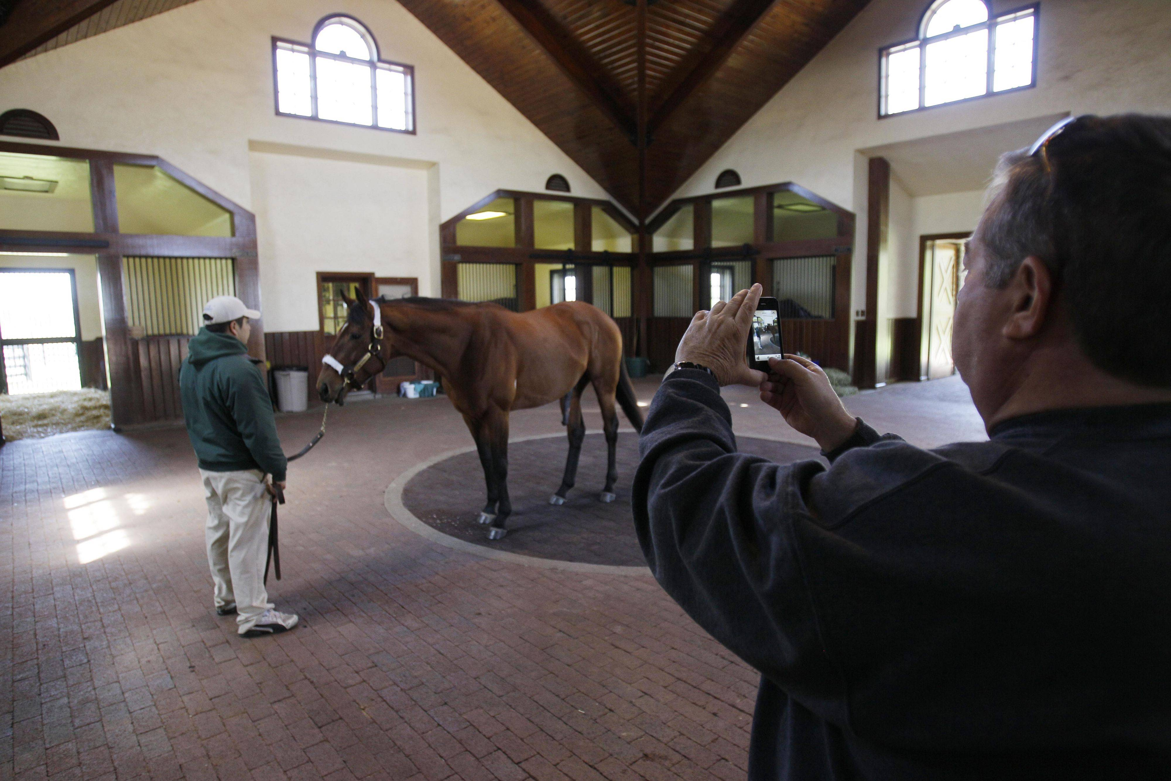 Mike Hays of Little Rock, Ark., photographs Big Brown during a tour of Three Chimneys Farm in Midway, Ky.