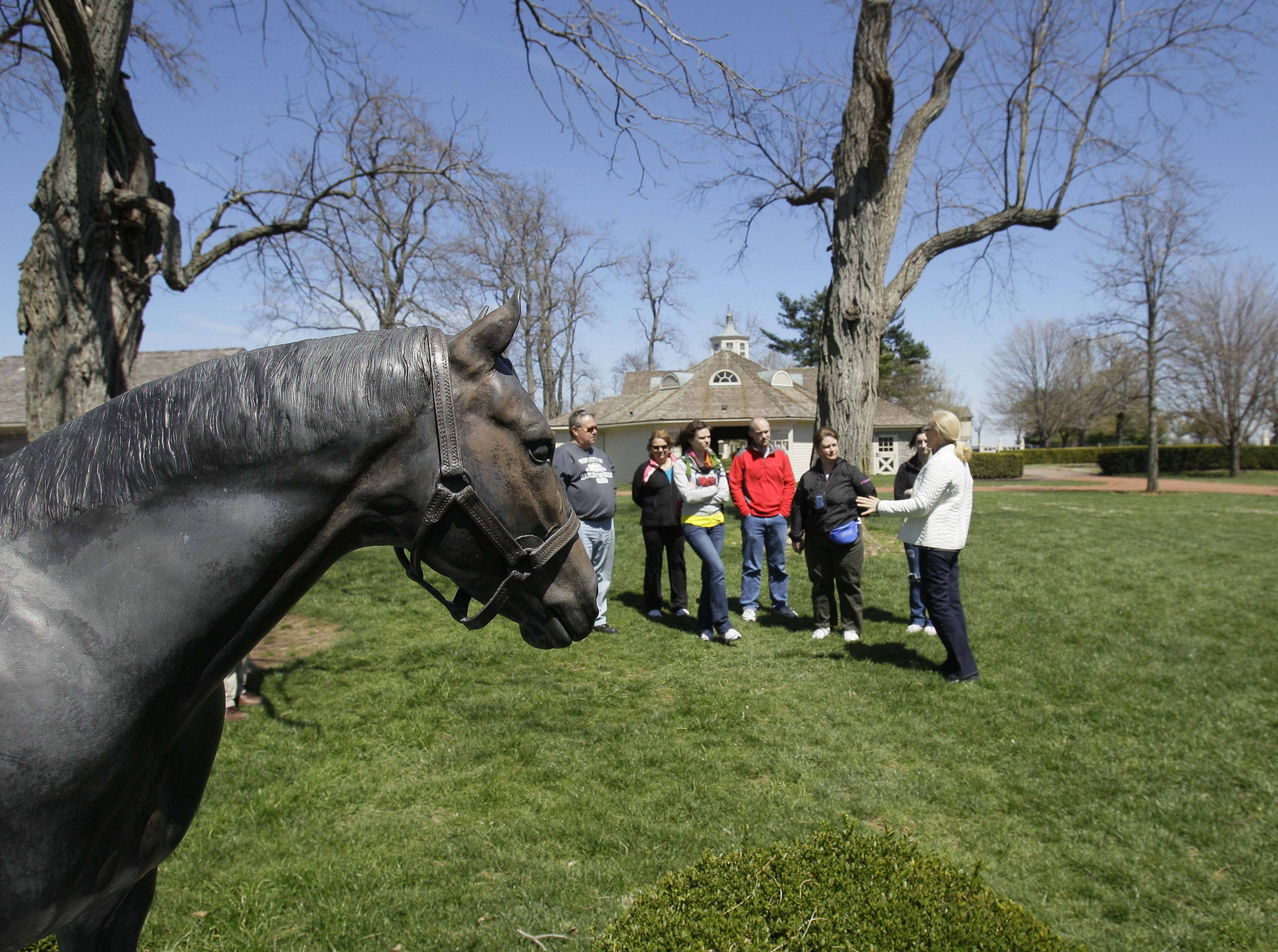 A tour group pauses in front of a statue of the famous thoroughbred Seattle Slew during a tour of Three Chimneys Farm in Midway, Ky.