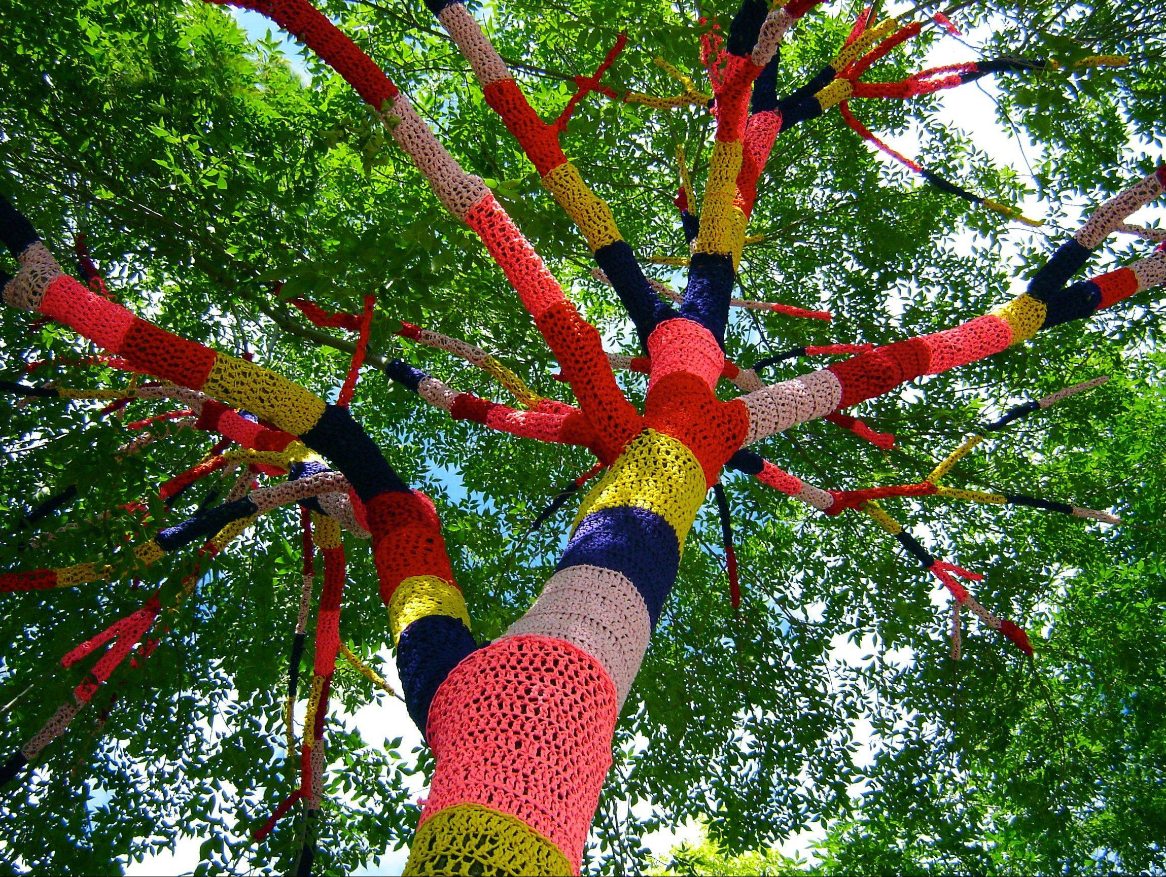 "Artist Carol Hummel will crochet a Tree Cozy for the Morton Arboretum's upcoming ""Nature Unframed"" exhibit. Her piece, titled ""lichen it!"" aims to soften the tree while emphasizing its structure."
