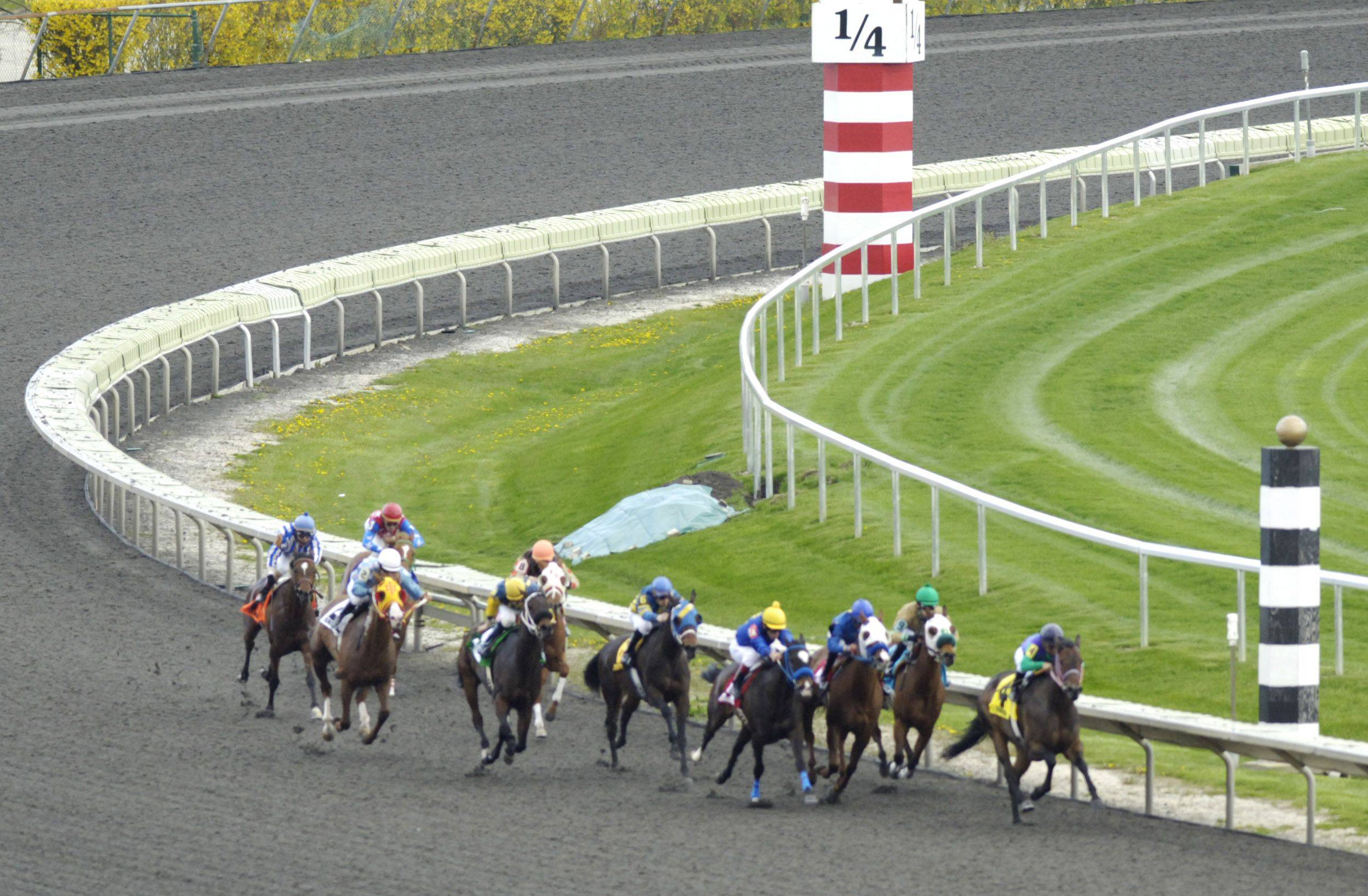 Horses in the fourth race head into the stretch on opening day at Arlington Park.