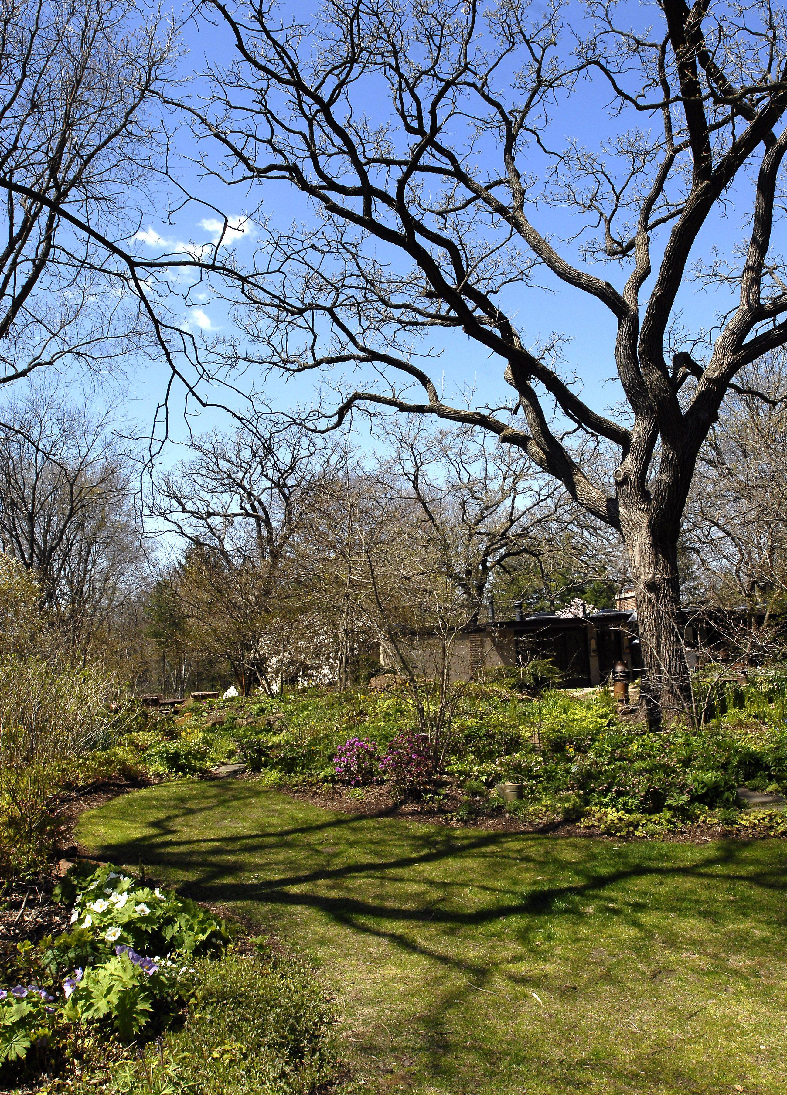 Barbara Wetzel's idyllic garden will be open for tour.