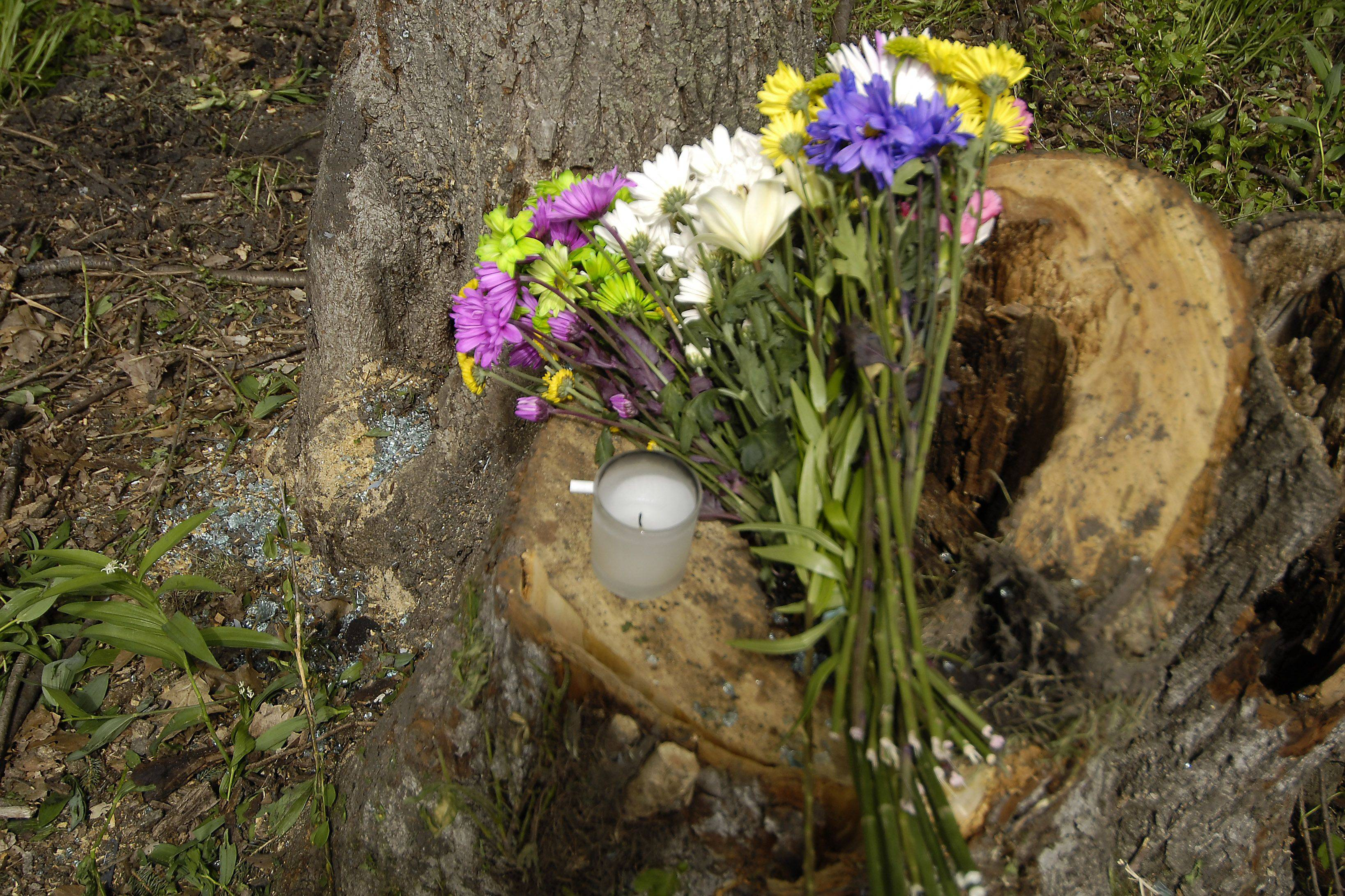 Flowers, a candle and broken glass mark the site of Monday's fatal accident on Green Road in Elburn that took the life of Batavia High School senior Lynlee Gilbert, 17. Passenger Sarah Ginter, 18, is in critical condition at Delnor Hospital.