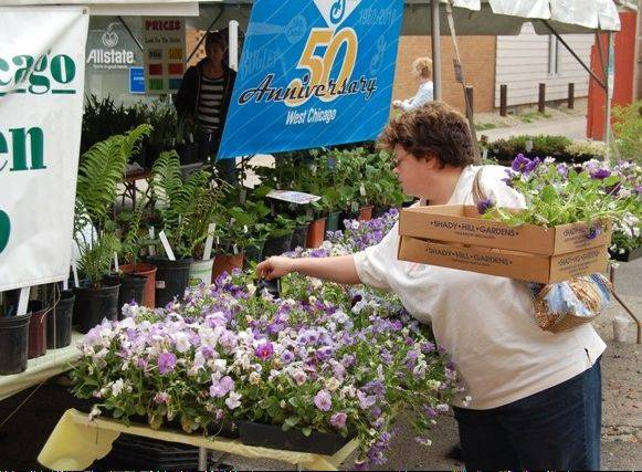 West Chicago Garden Club's annual plant sale draws gardeners from throughout the area to Blooming Fest.