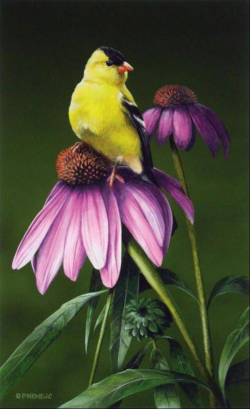 """Garden Guest,"" a painting by artist Paul Nemejic, is the logo for this year's West Chicago Blooming Fest."