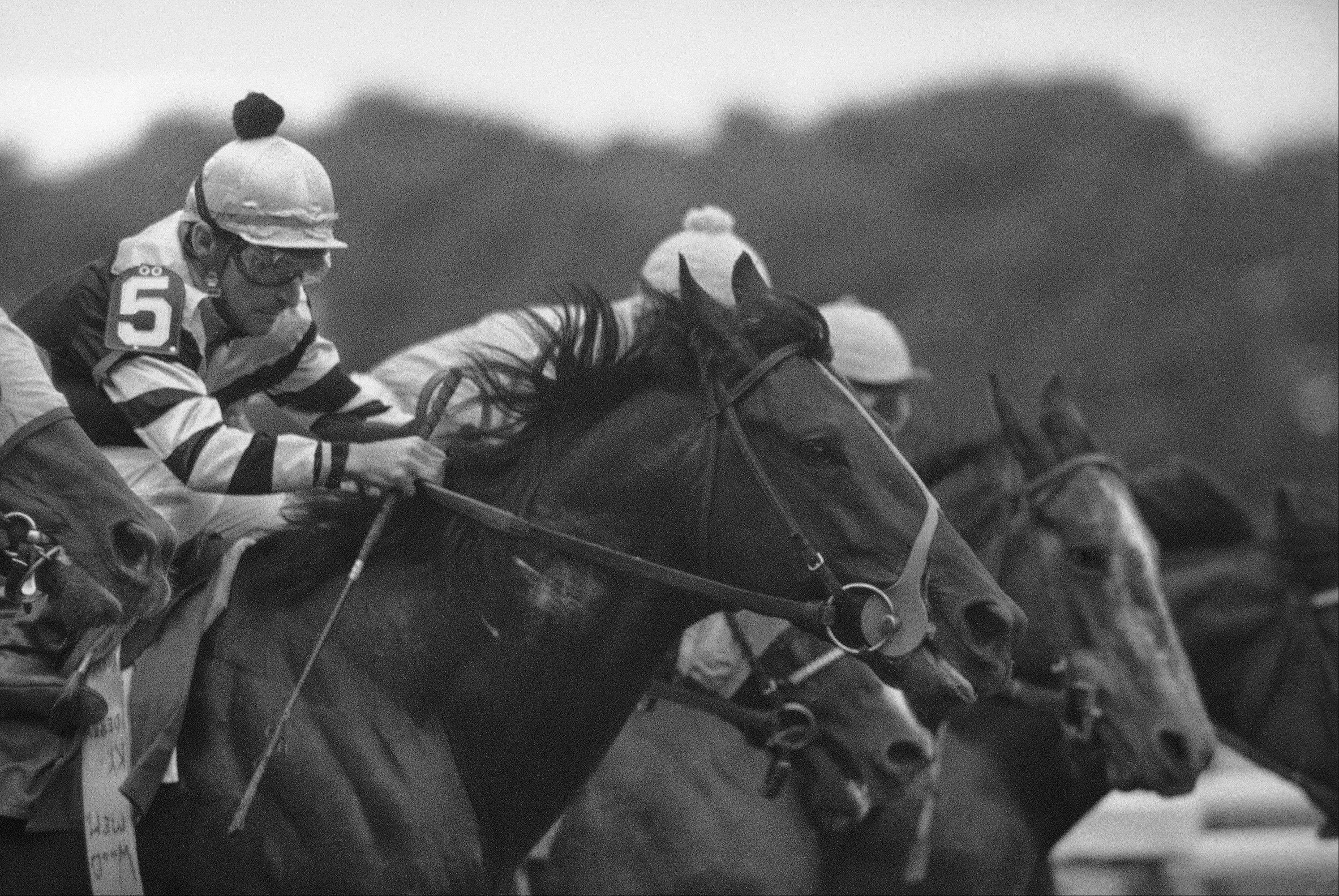 Jockey Jean Cruguet, here riding Seattle Slew to clinch the Triple Crown at Belmont Track on June 13, 1977, is considering a one-race return at Arlington Park next week.