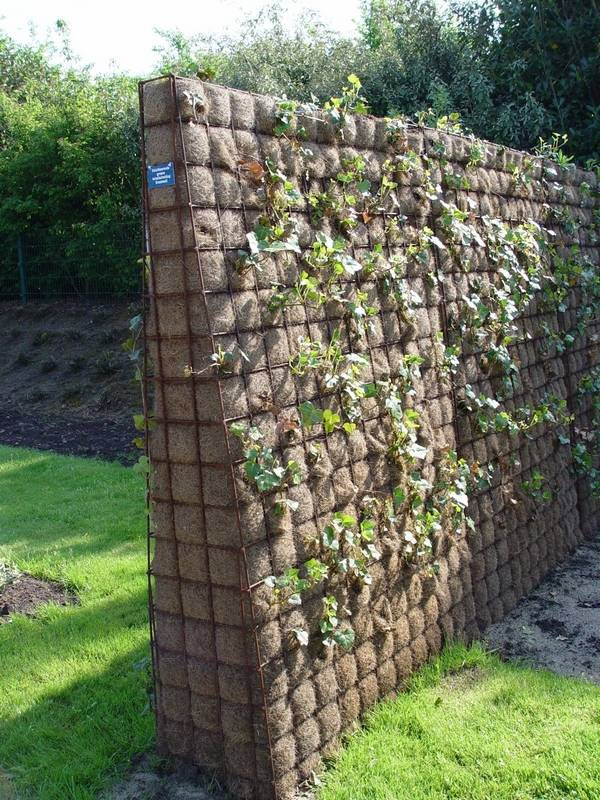 Take Visual Control With A Screen Fence