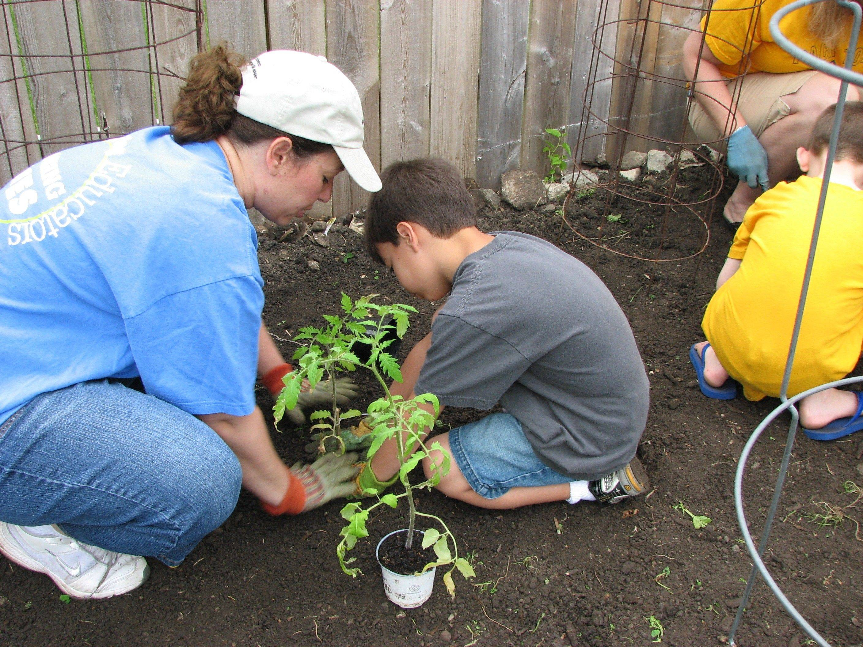 Scouts help Giving Garden campaign continue to grow