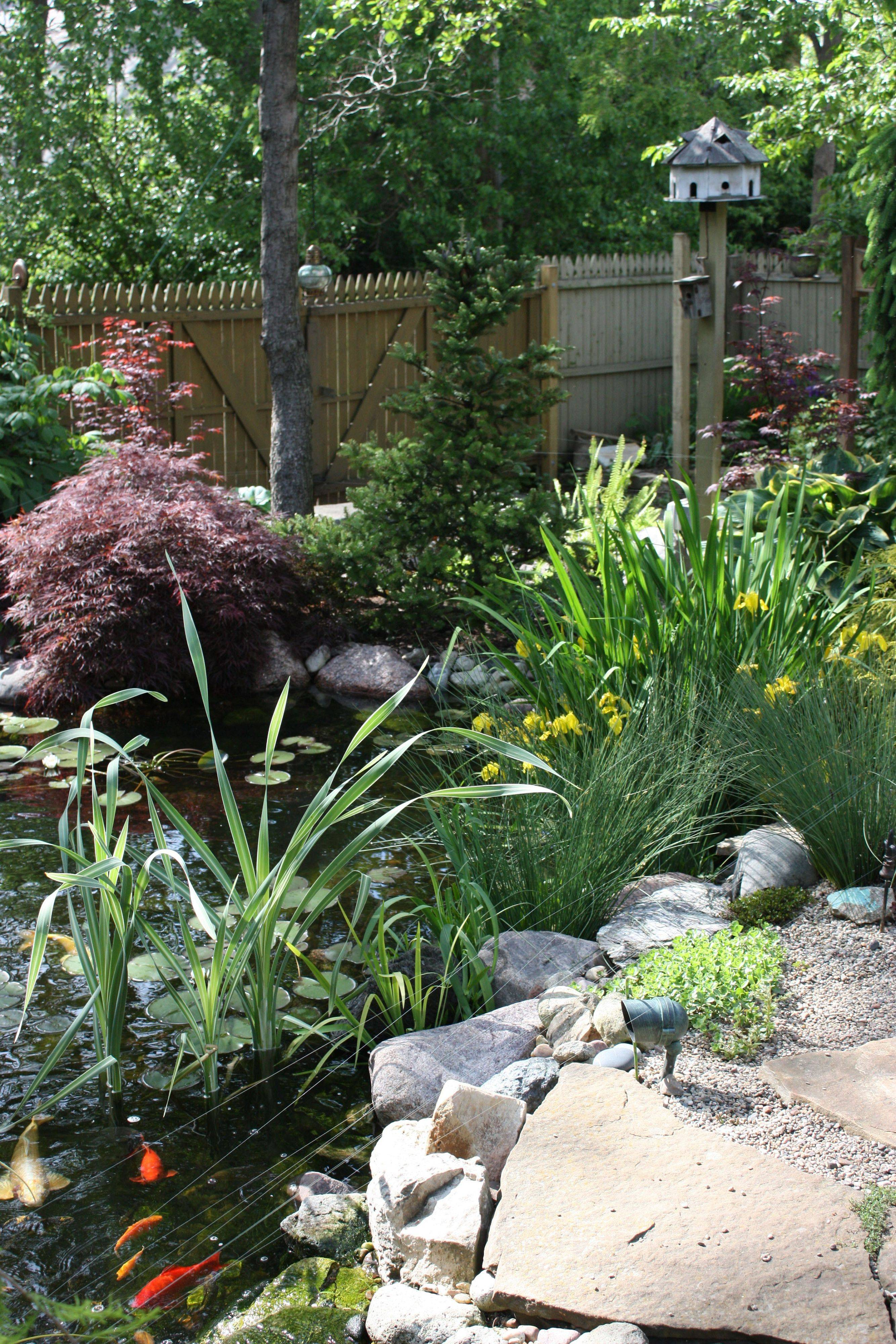 Ellen Berry designed her garden -- featured on the Lisle Garden Gait -- to include a cascading brook and 15-foot pond where water lilies and chow koi bring color. Her landscaping focuses on foliage and texture rather than blooms and blossoms.