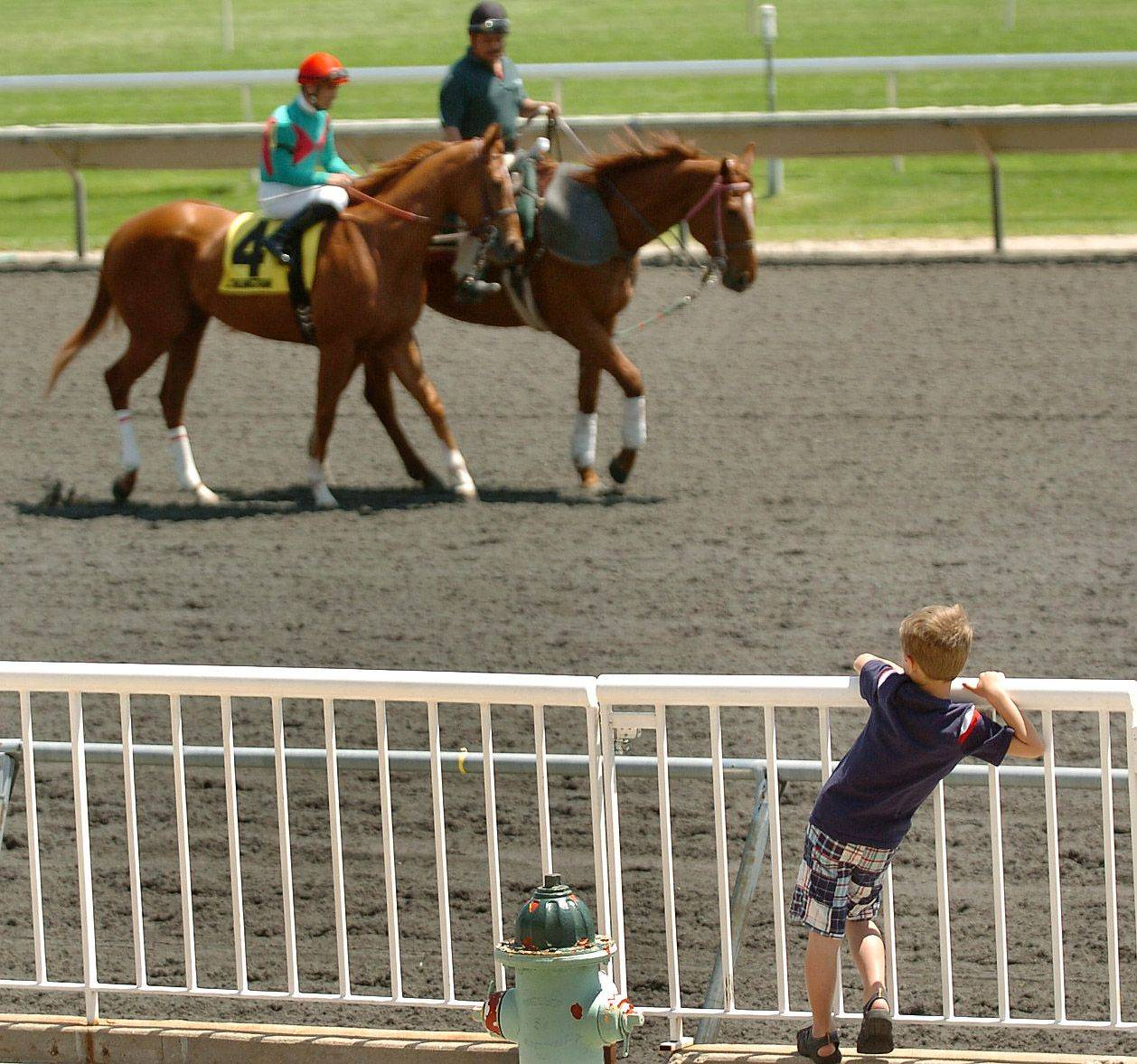 Kids aren't allowed near slot machines, but Jimmy Kehoe, 7, watches the horses up close during a visit to Arlington Park while his grandparents Lyn and John Bray of Bourbonnais and his great-grandmother Edna Bray of San Diego watch from the stands.
