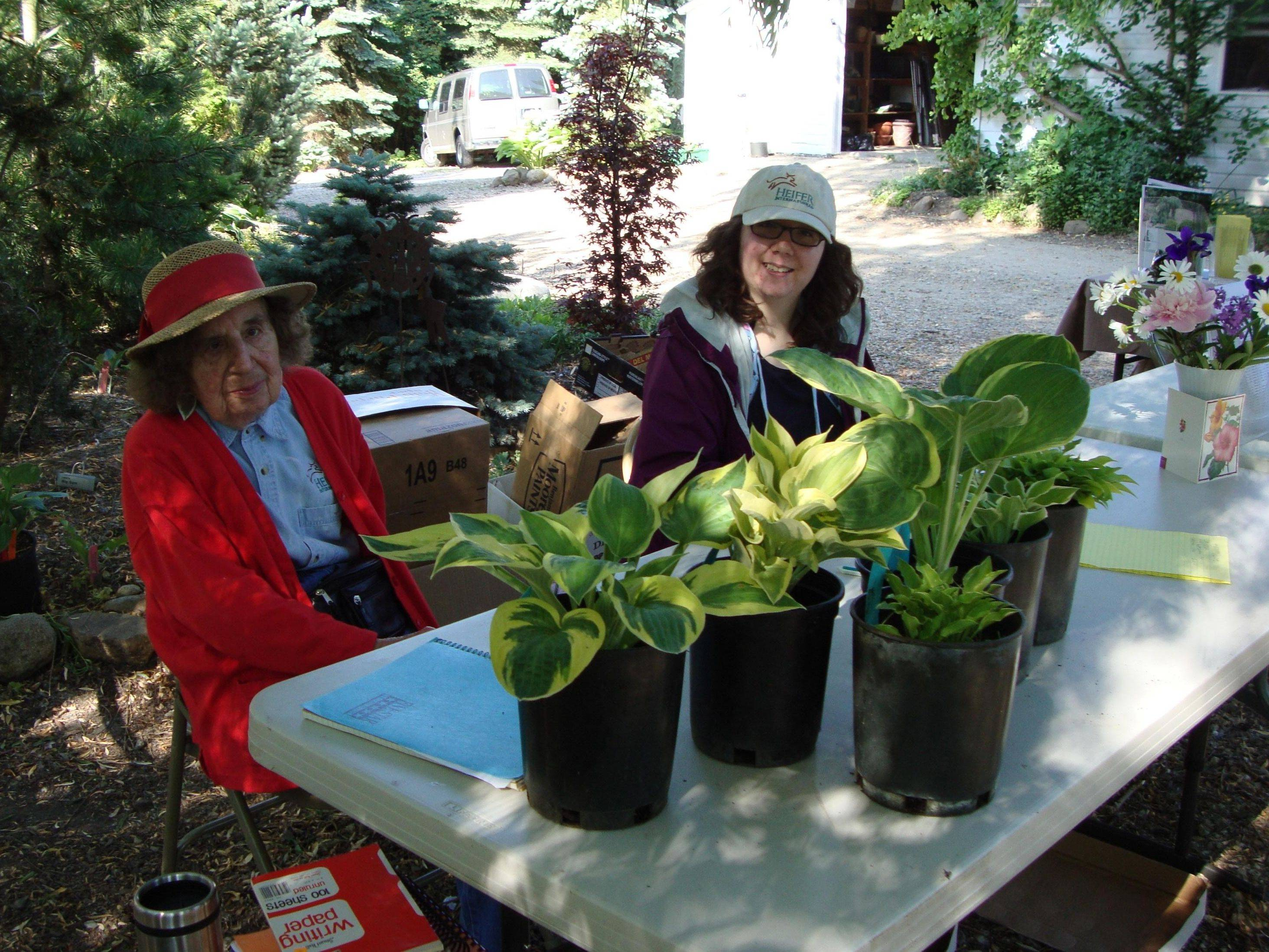 """Hosta Queen"" Margaret Eyre and volunteer Nina Sandner help out at last year's Hosta Happening fundraiser event. This year's event will be Saturday, June 11, in Woodstock."
