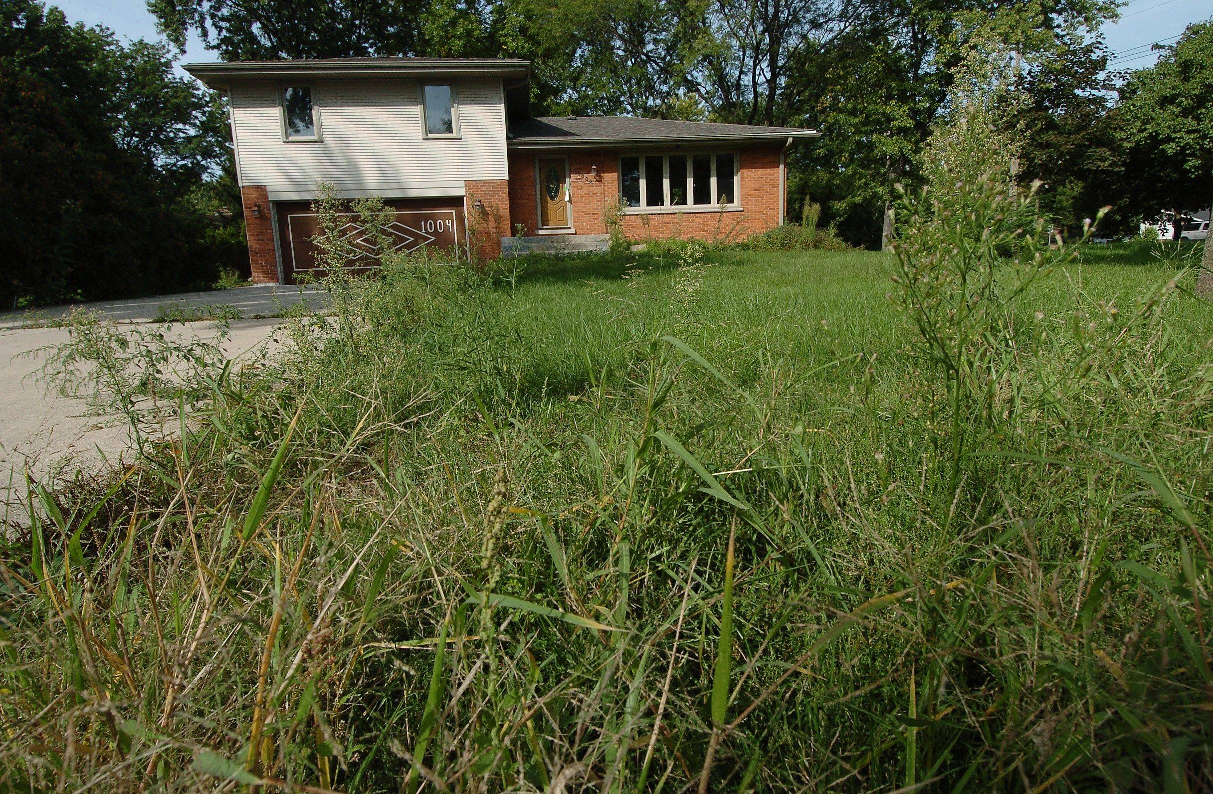 how to clear weeds from vacant land