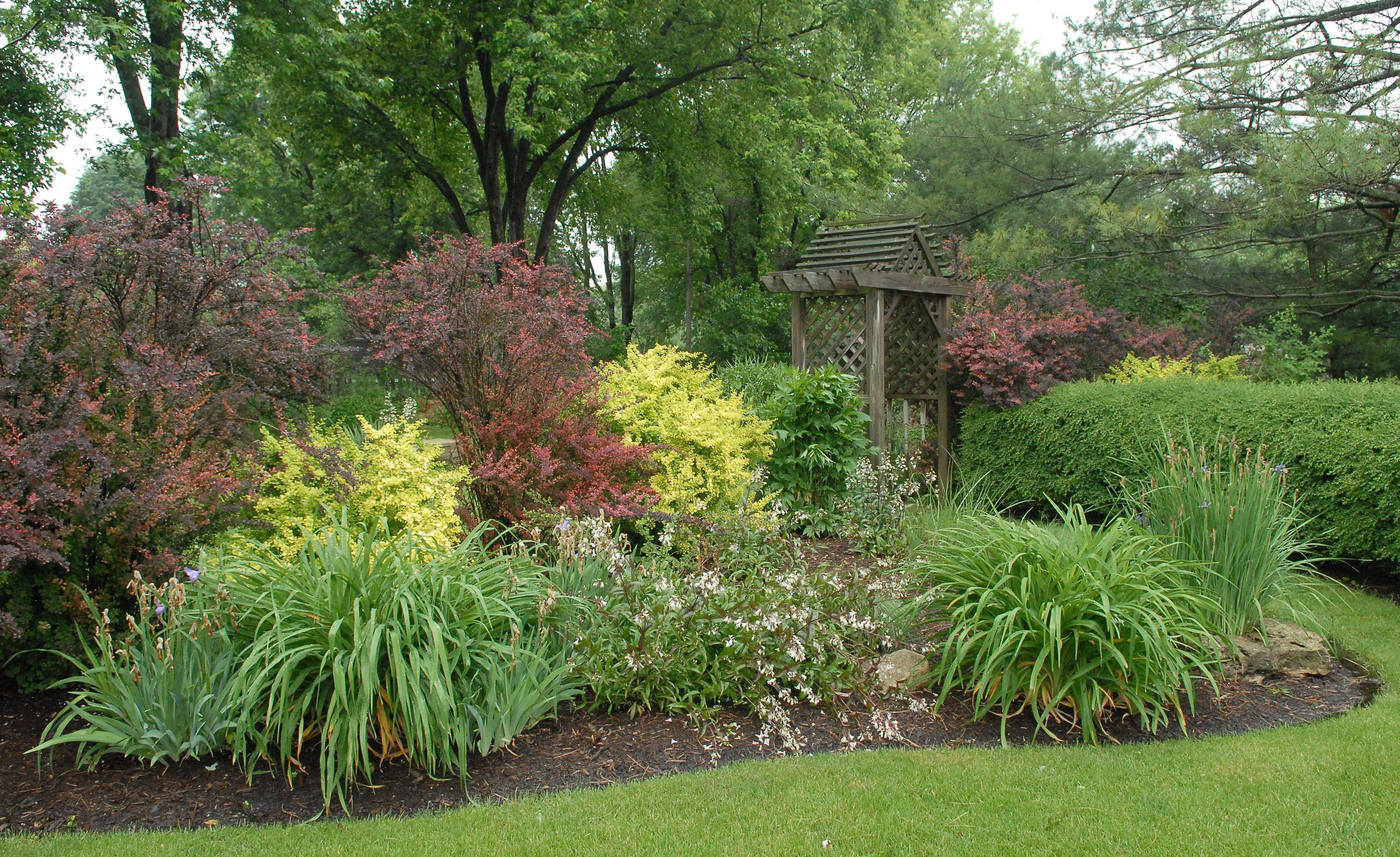 Blooms and foliage are both important in Lori and Byron Ambrose's garden.