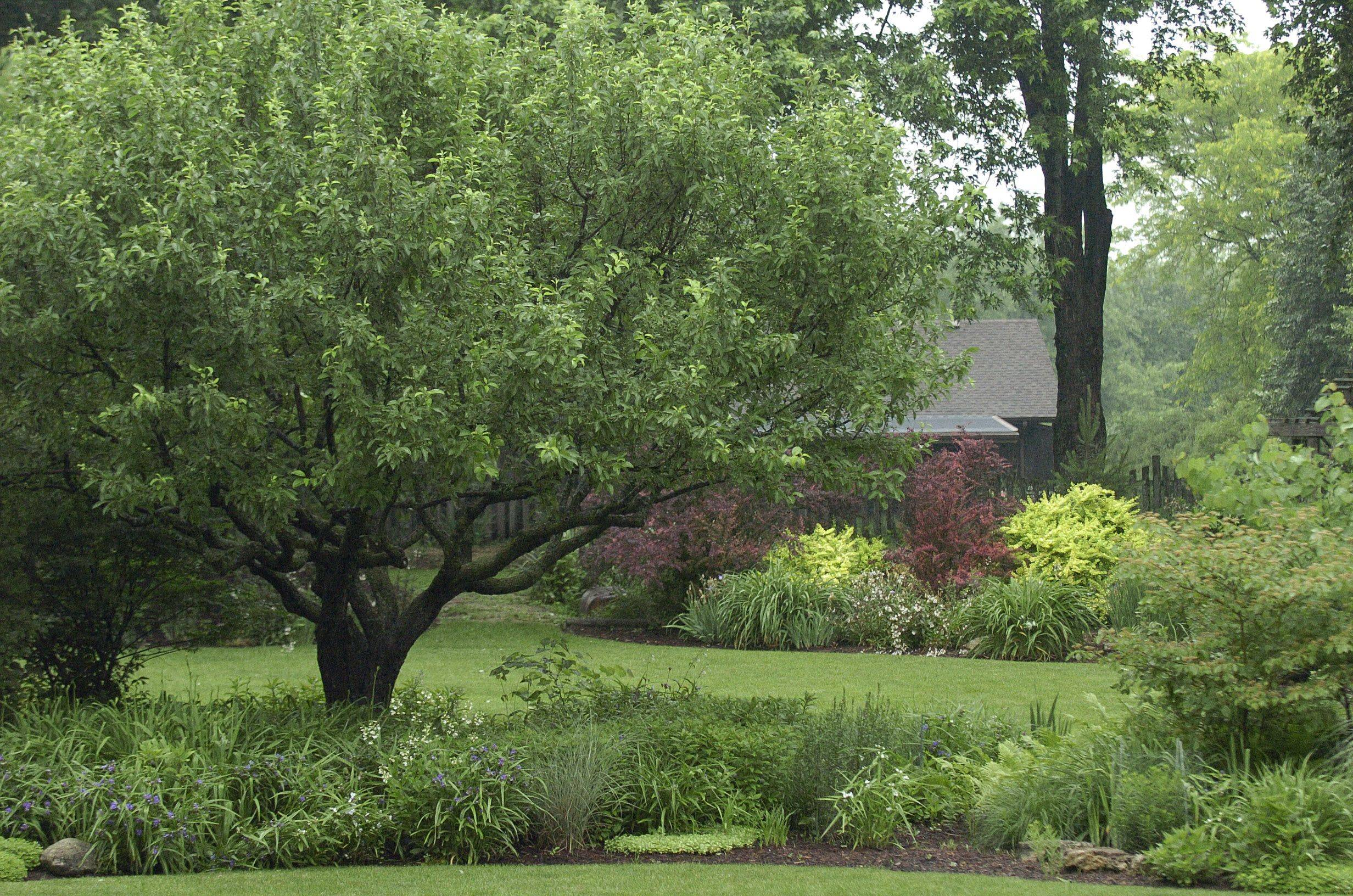 The garden of Lori and Byron Ambrose will be open for the Batavia Plain Dirt Gardeners Saturday, June 25.